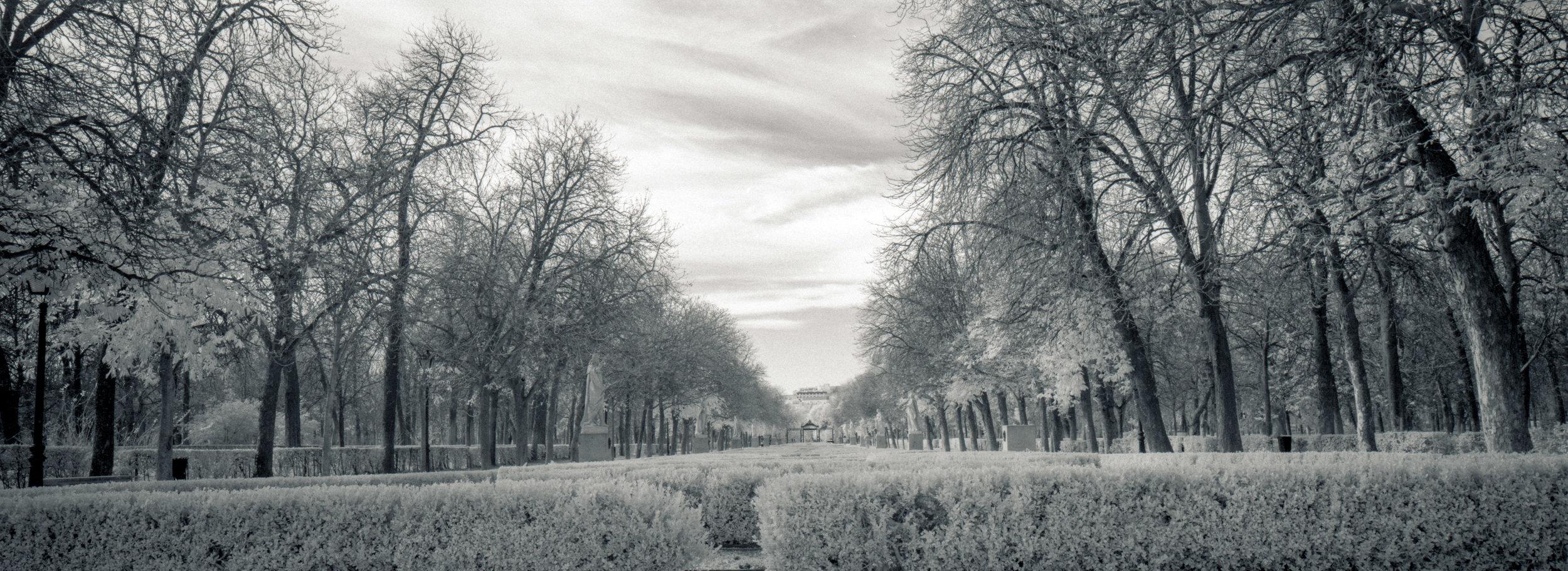 MadridInfrared13.jpg