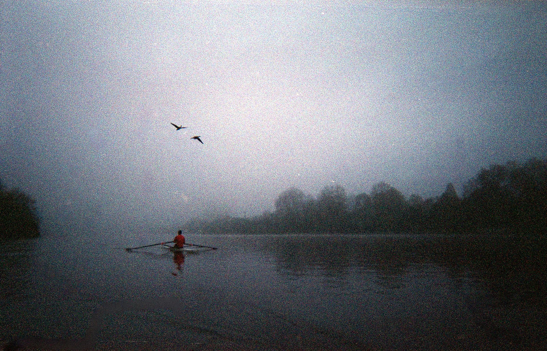Rowing10.jpg