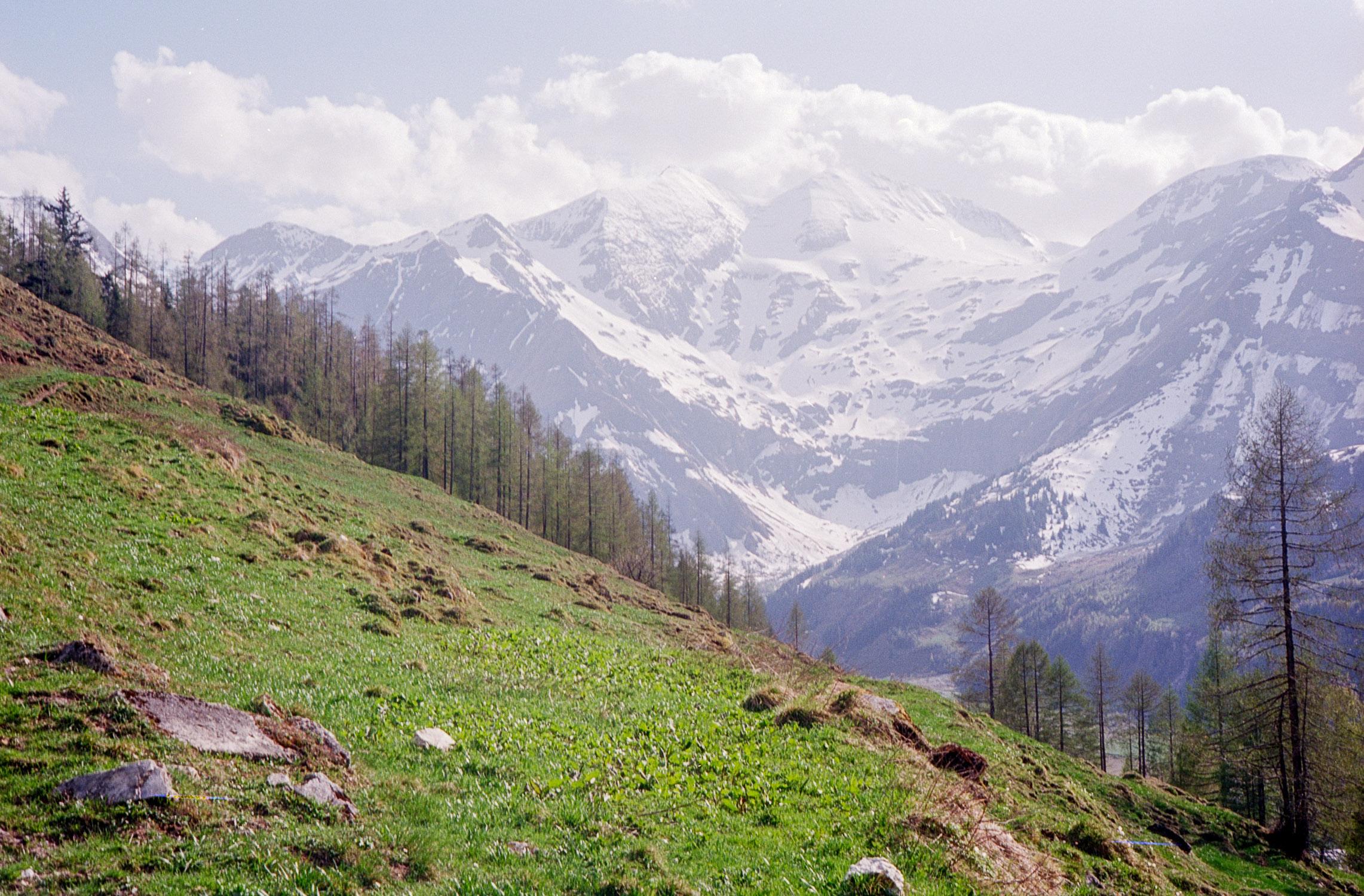 Bavaria54.jpg
