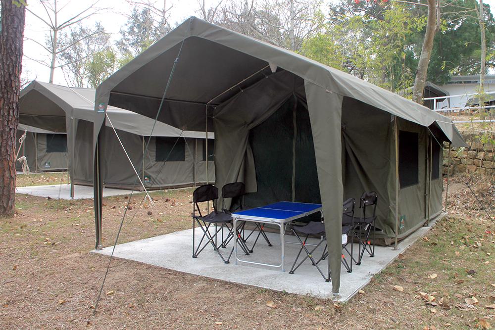 Safari Tent Medium