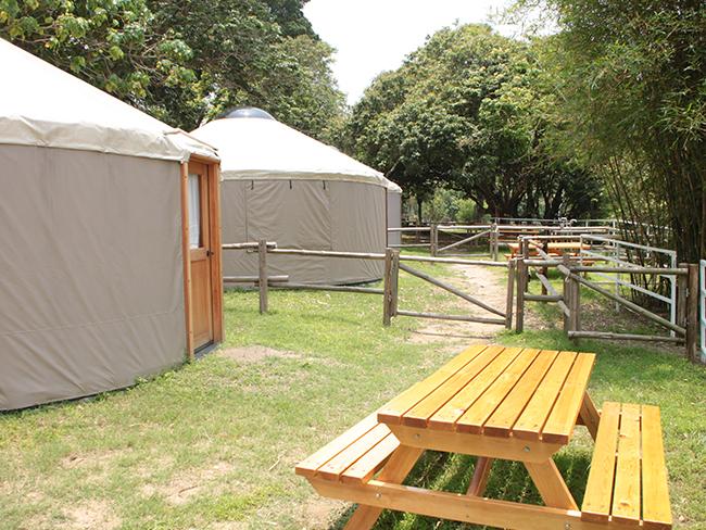 yurt203.jpg