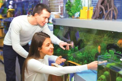 aquarium case study photo.jpg
