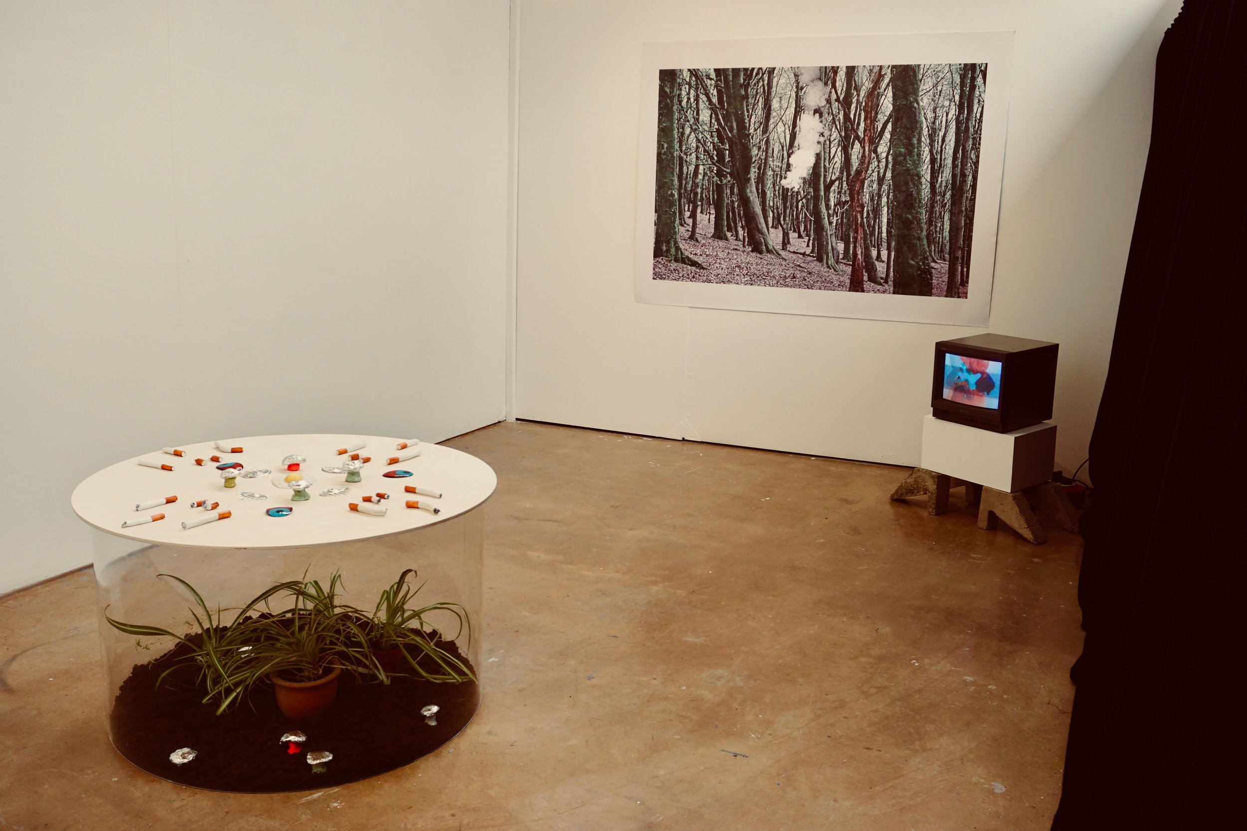 installation view of MFA show at Cardiff school of Art and Design. photography, video, sculpture. September 2019