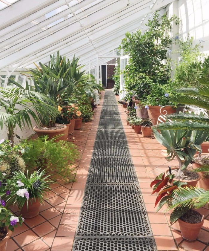 Indoors - If you don't have a garden or balcony, bring the outside in. Apply the same principles of scale, using many, smaller plants or a few big pieces of green to achieve a whole lot of impact. Ivy and ferns — such as the Maiden Hair Fern — grow well in bathrooms due to the damp environ, as do air plants. Cacti and succulents also do well indoors — a cactus can survive months without water but require light aplenty.
