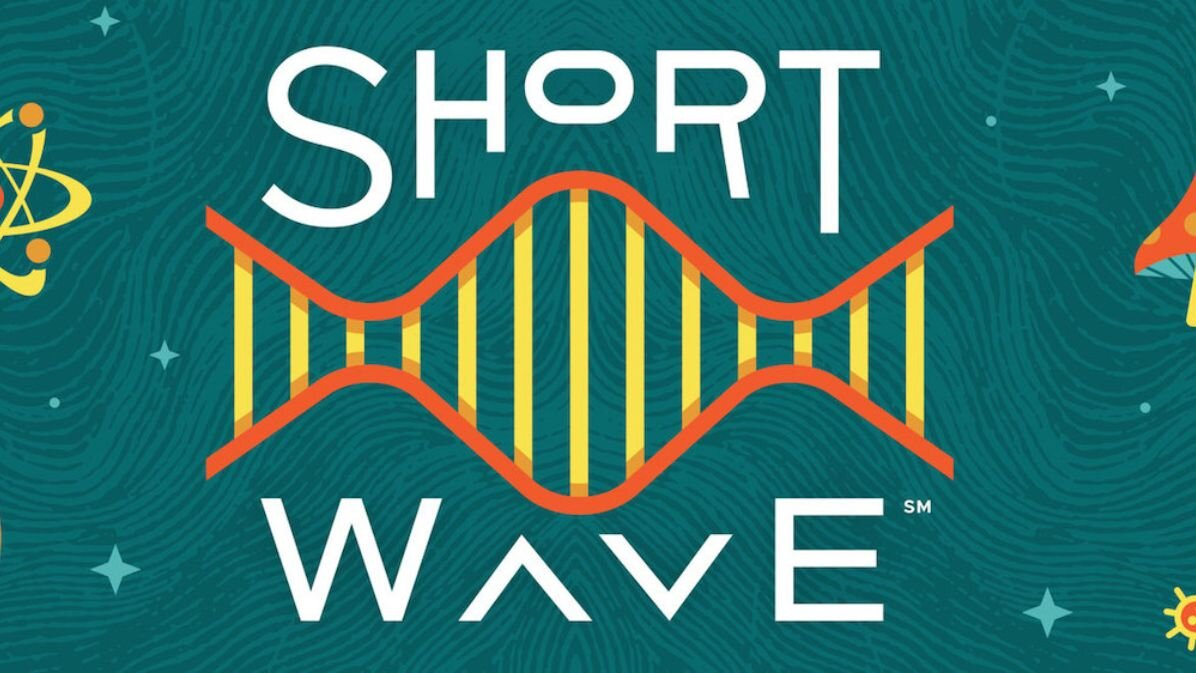 Short Wave  is a brand new podcast making science cool (and understandable) for everyone. 10 mins, every day, looking at new discoveries and everyday mysteries with creativity and LOLs.   Listen