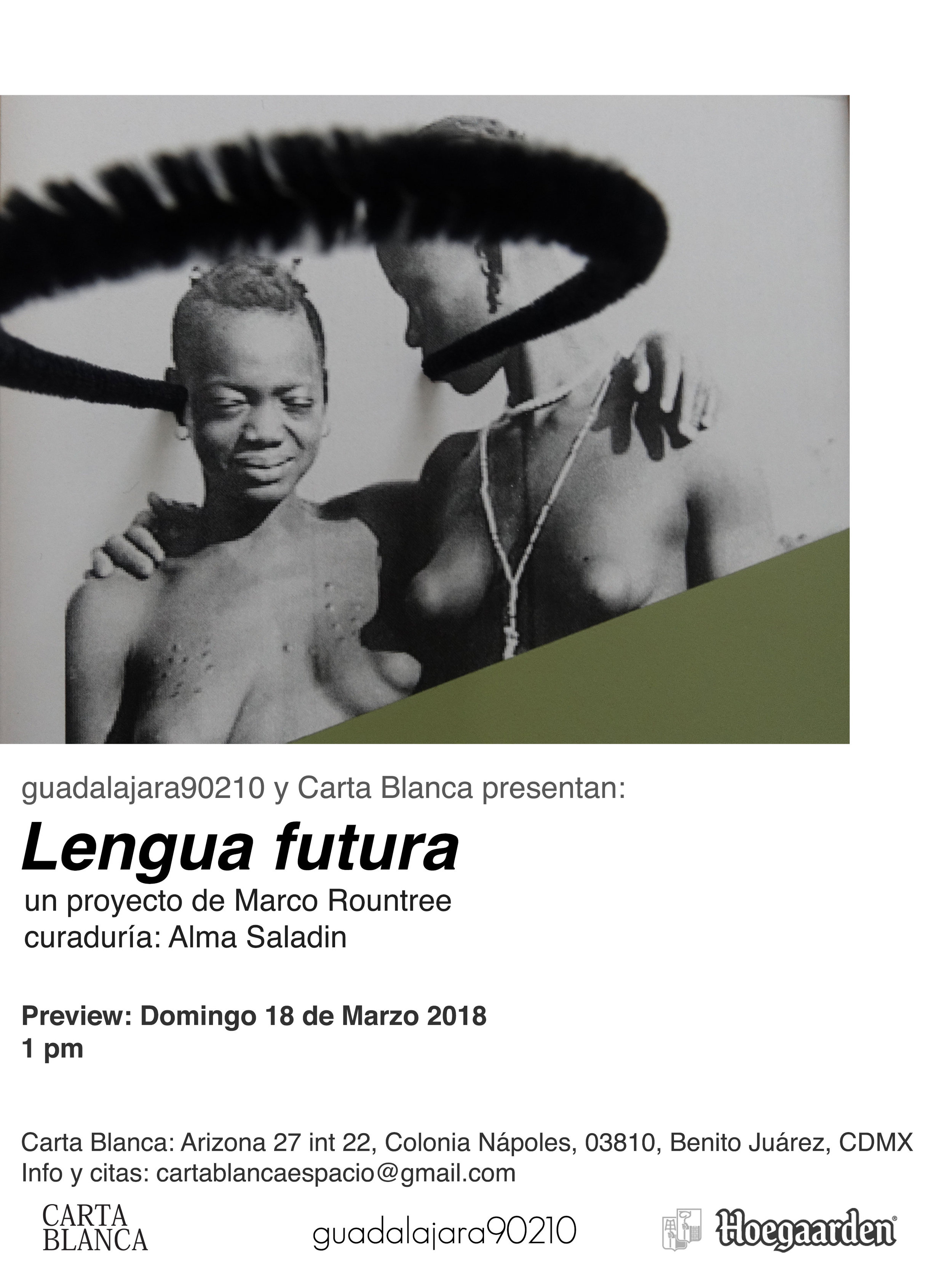 Lengua-futura-preview.jpg