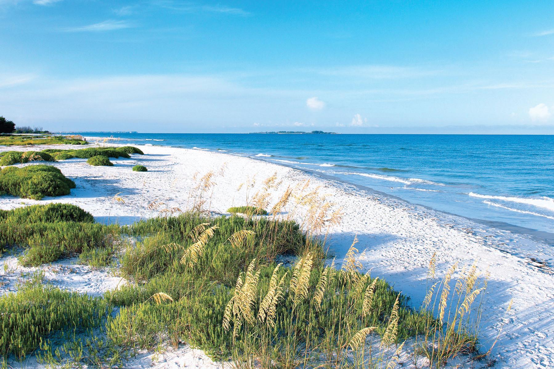beach_FtDesoto4_SYRpcUp-jk4j0TZcGNDlzKq_rgb_l-2.jpg