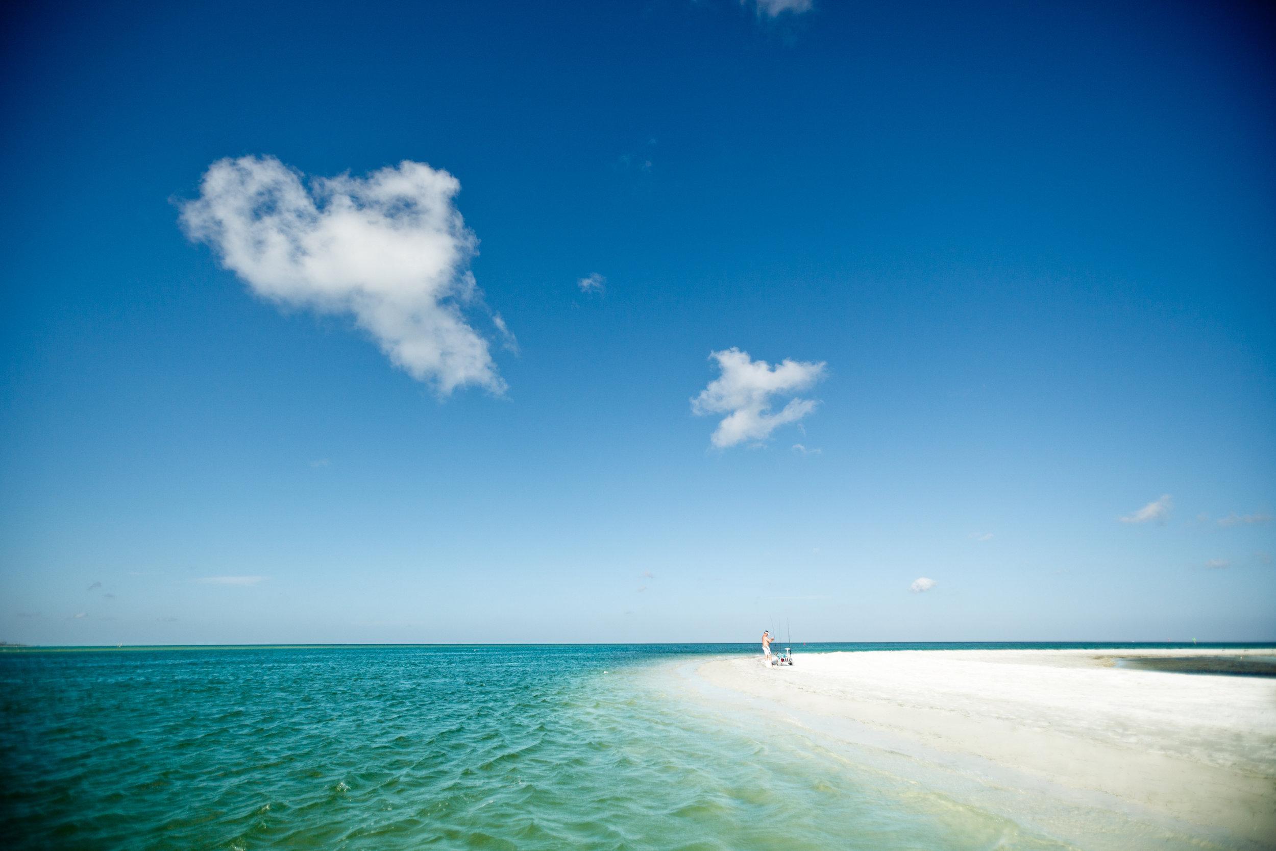 beach_caladesi_S6yVqTMJJtn45sARhrm9Ugq_rgb_l.jpg
