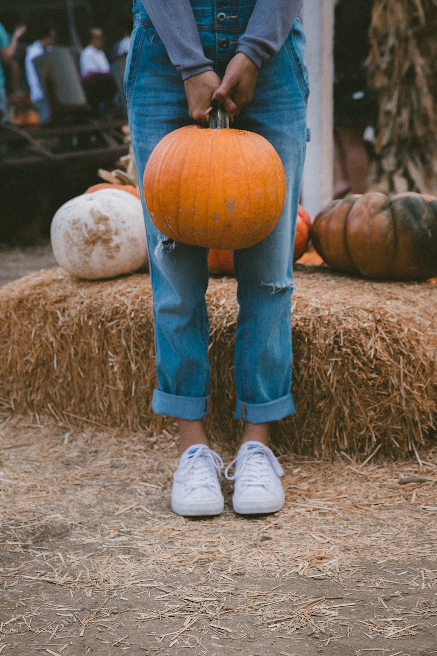 best pumpkin patches in atlanta 2018