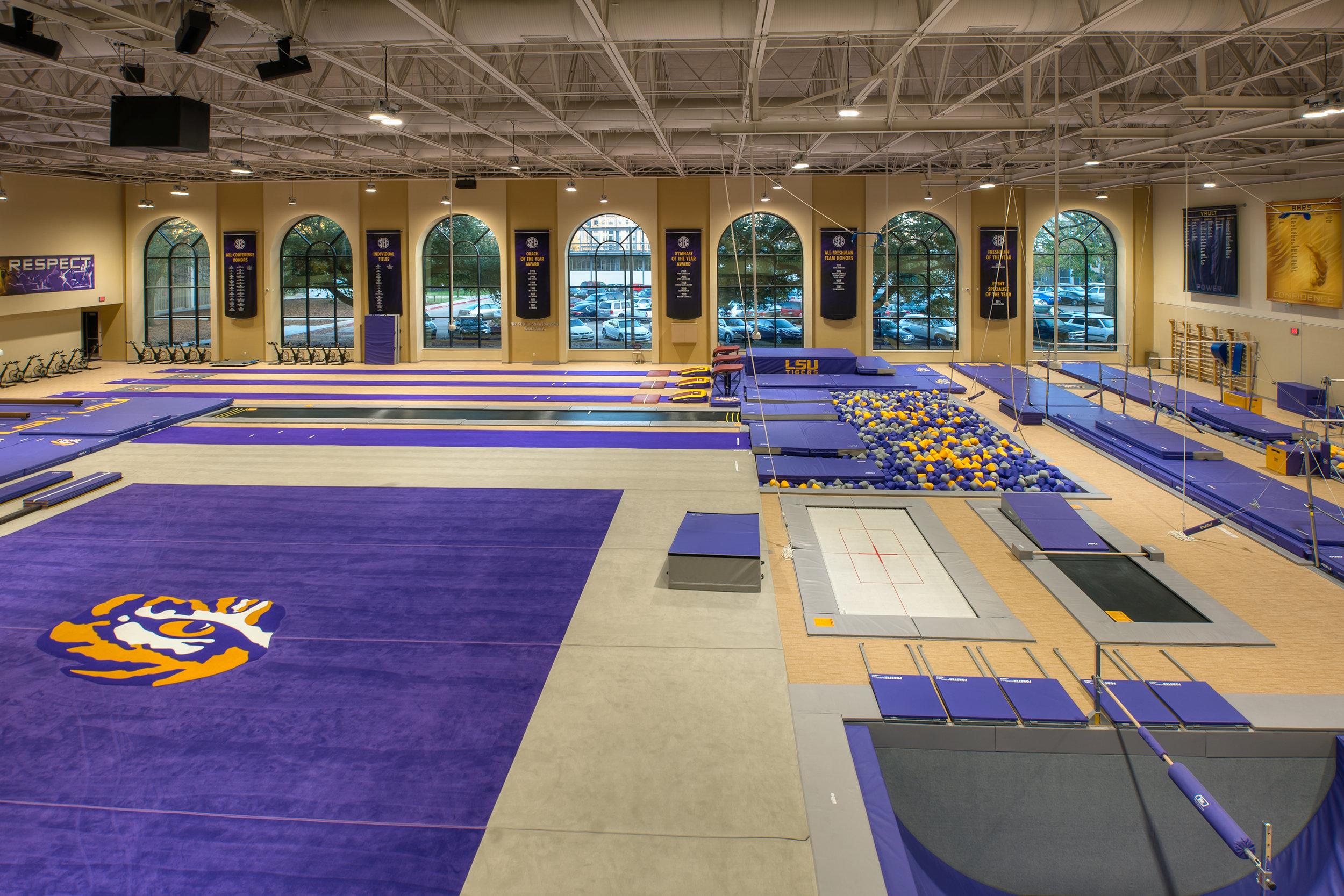 LSU Gymnastics 4.jpg