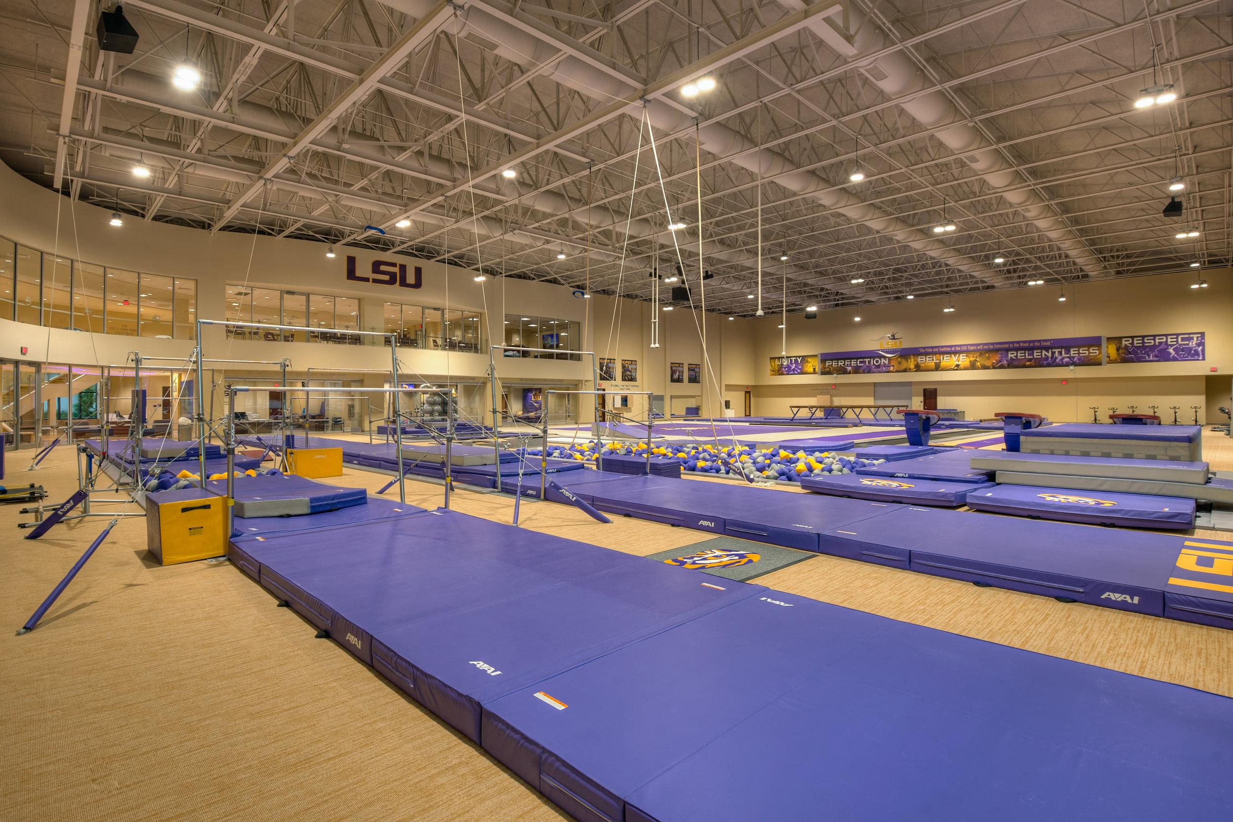 LSU Gymnastics 8.jpg