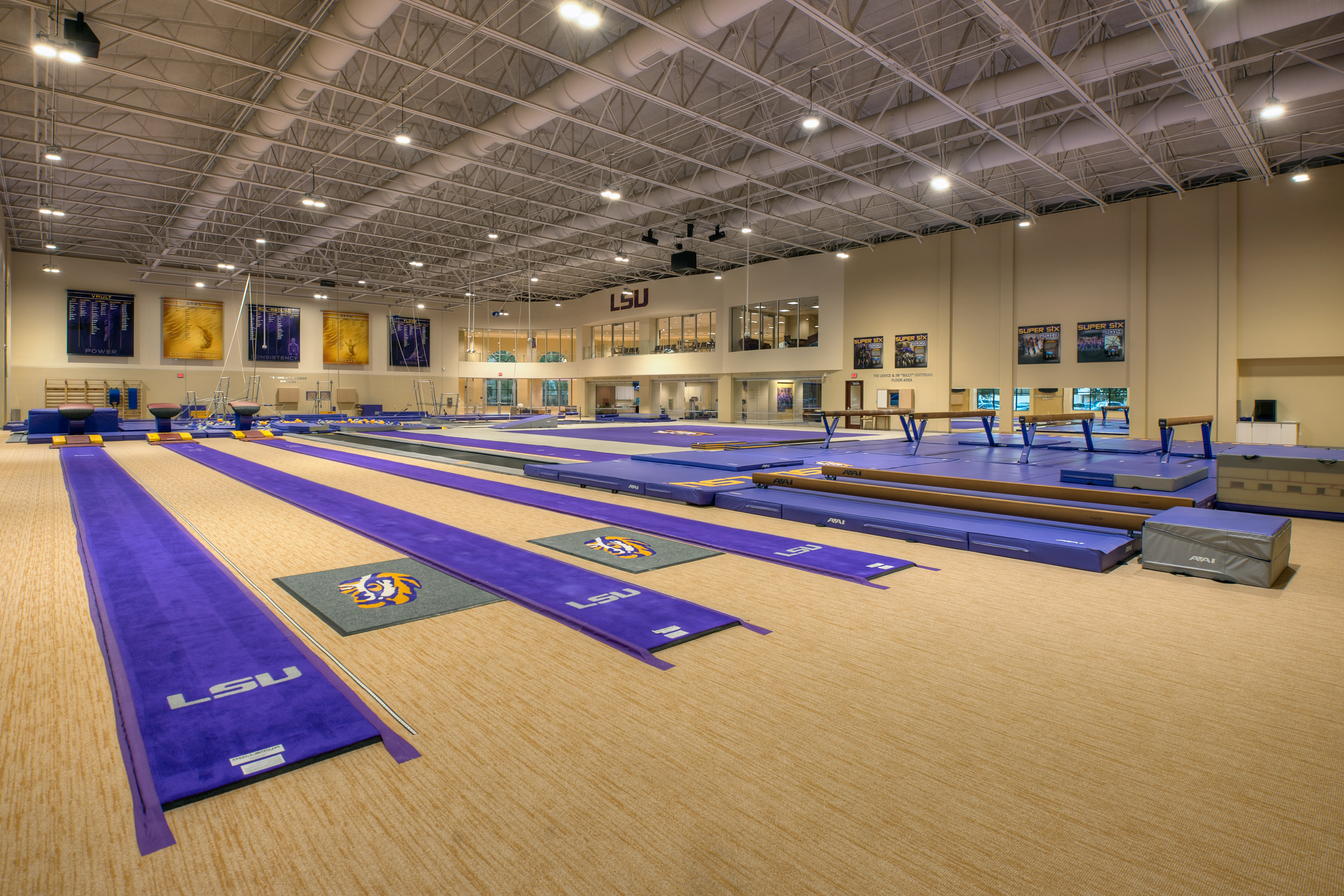 LSU Gymnastics 9.jpg