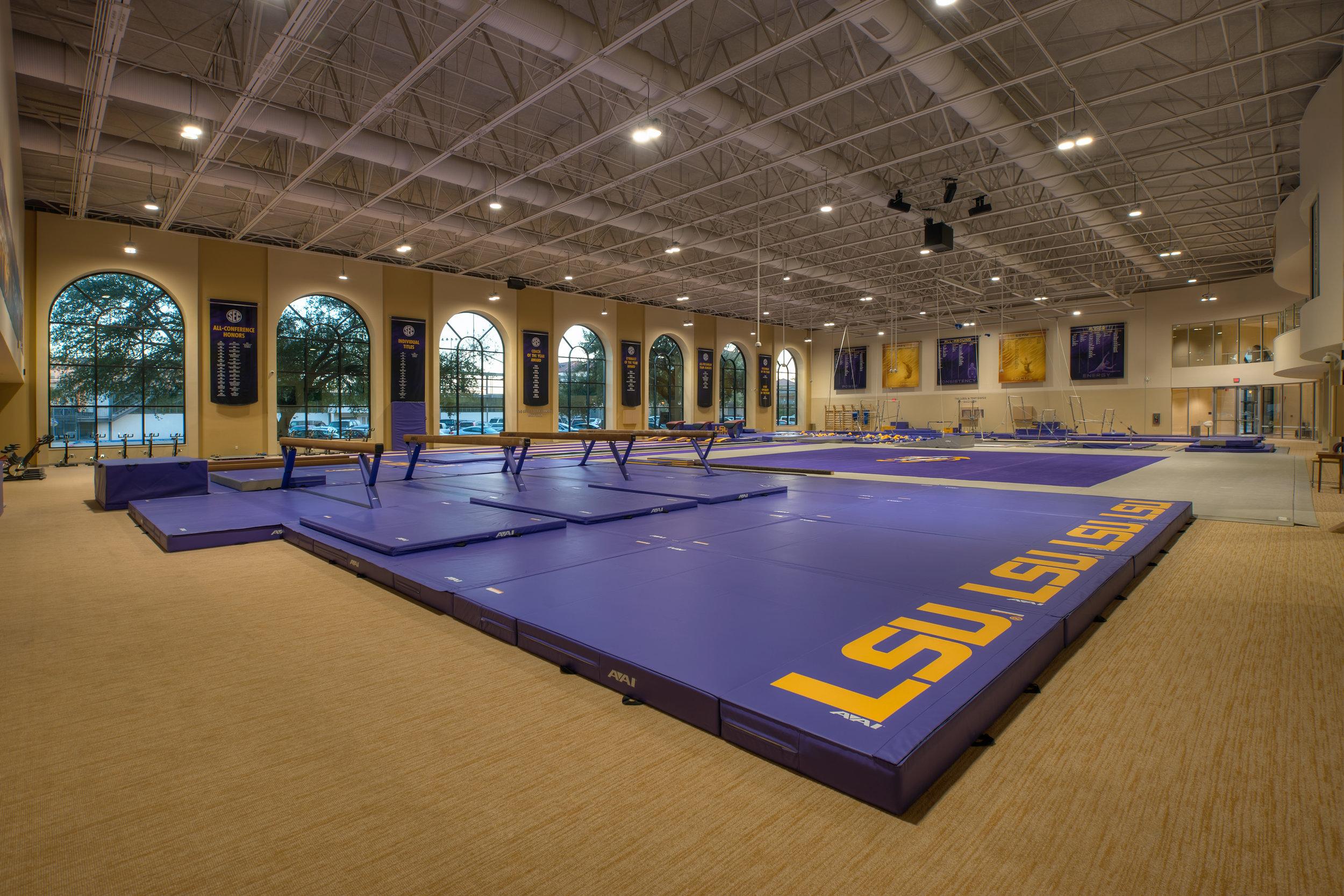 LSU Gymnastics 10.jpg