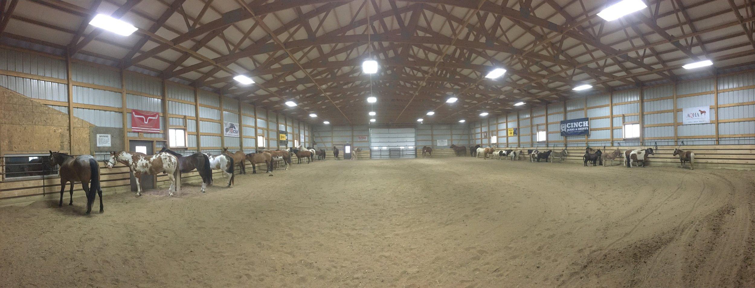 full arena.jpeg