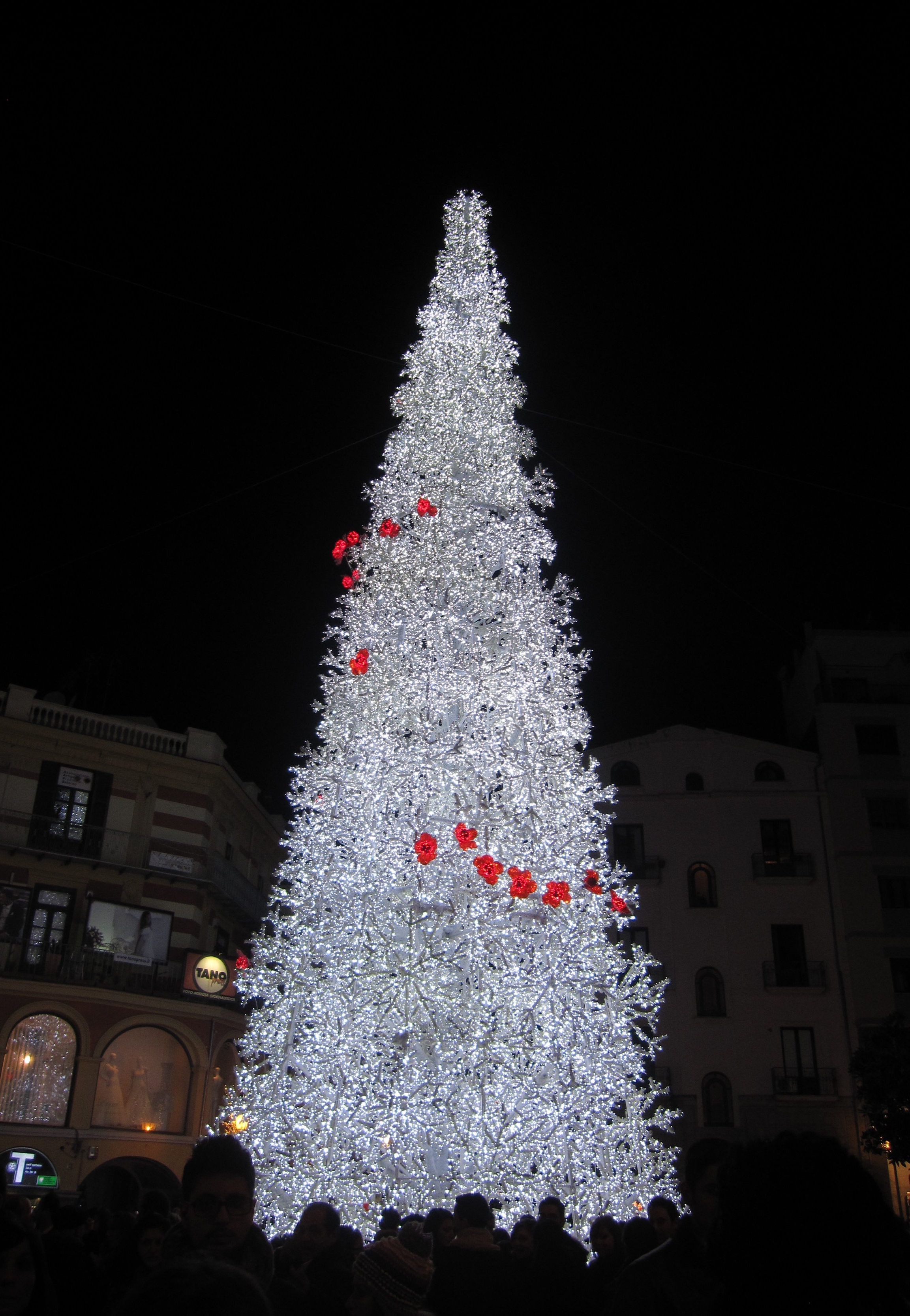 Christmas tree in Salerno.