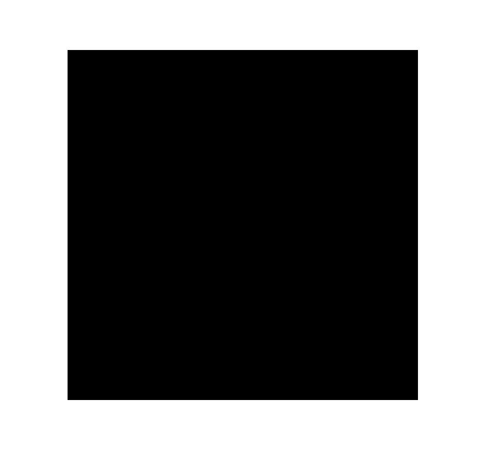 Black Flag PNG transparent Light BG Compatible.png