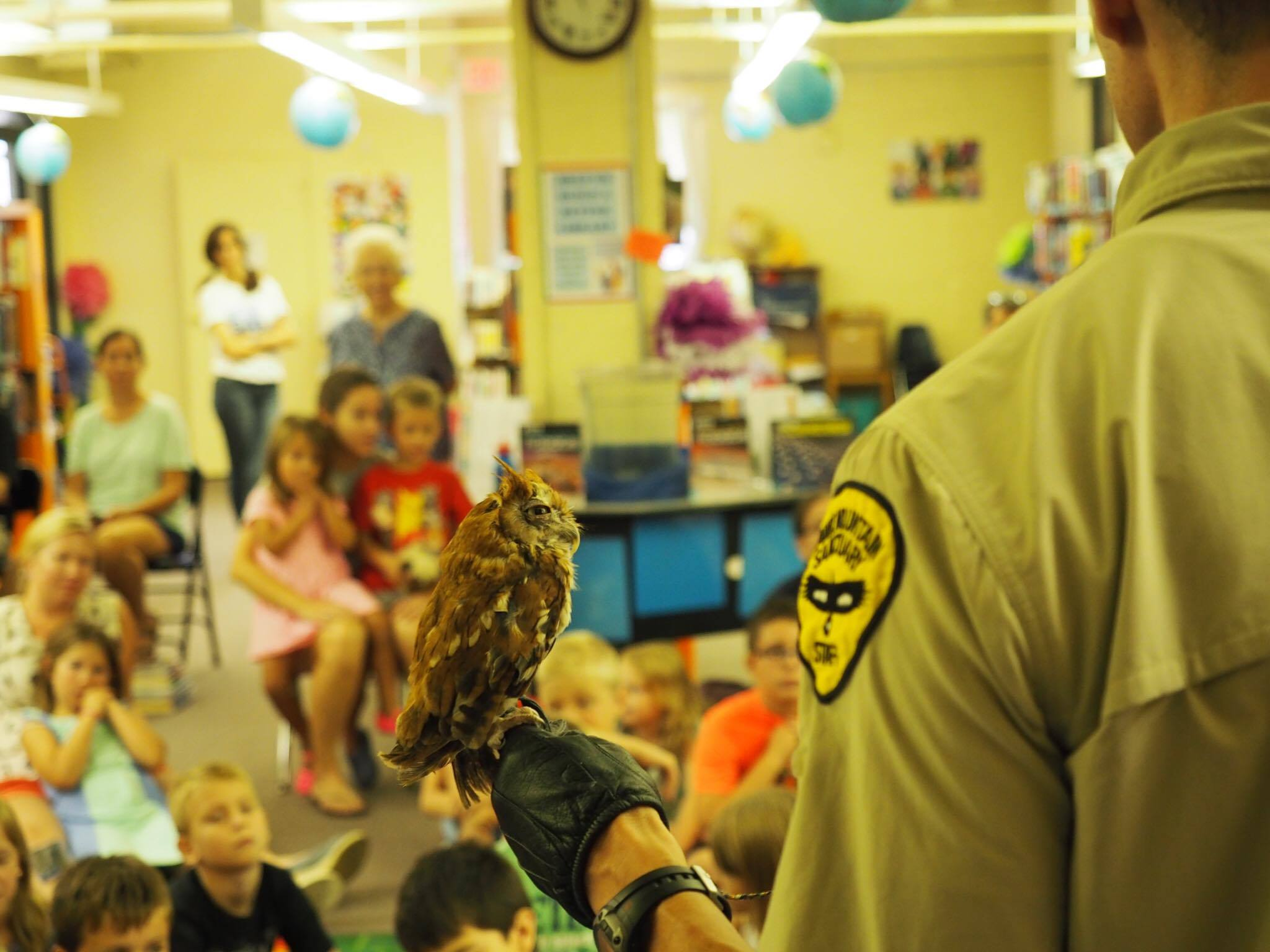 Hawk Mountain educator Adam Carter presenting a live raptor program at the Pottstown Public Library, featuring a red-morph eastern screech owl.