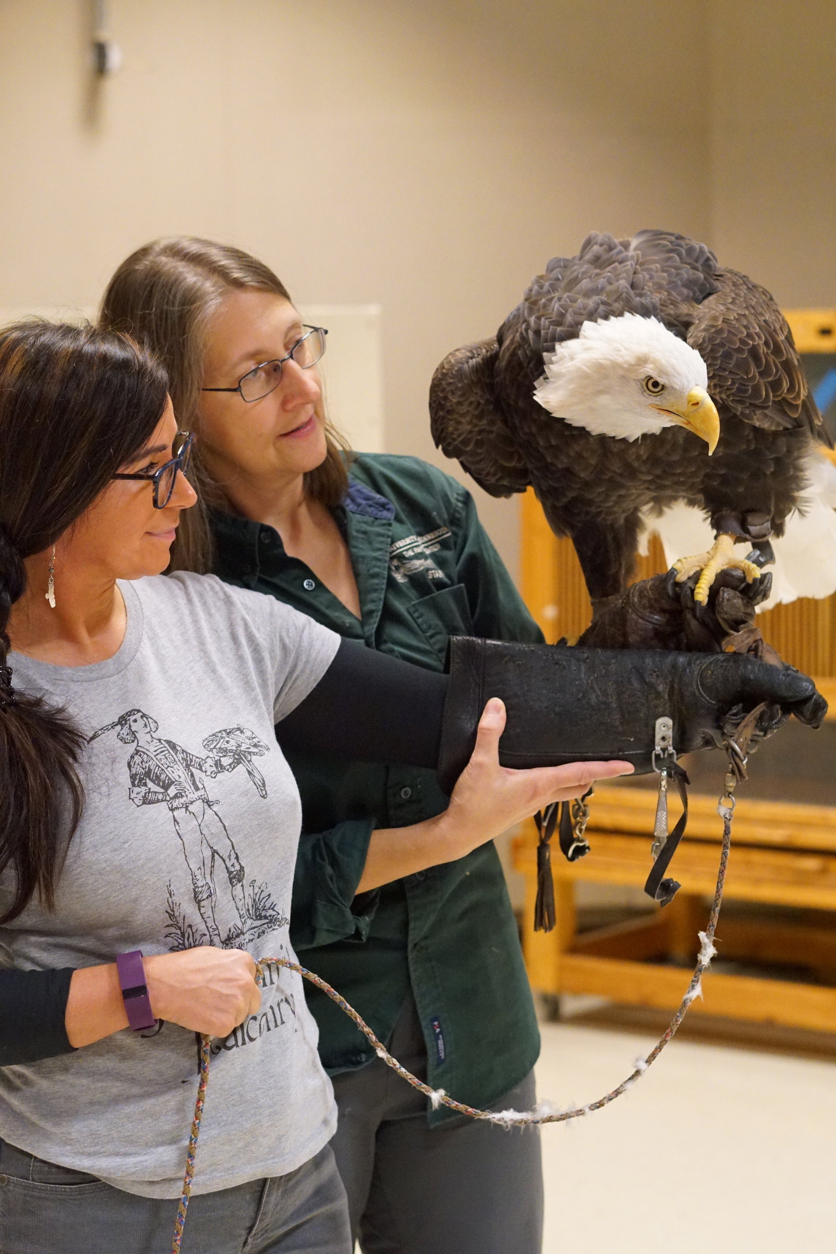 Rachel and TRC's Education Program Manager Gail Buhl work through passing off and handling a bald eagle.