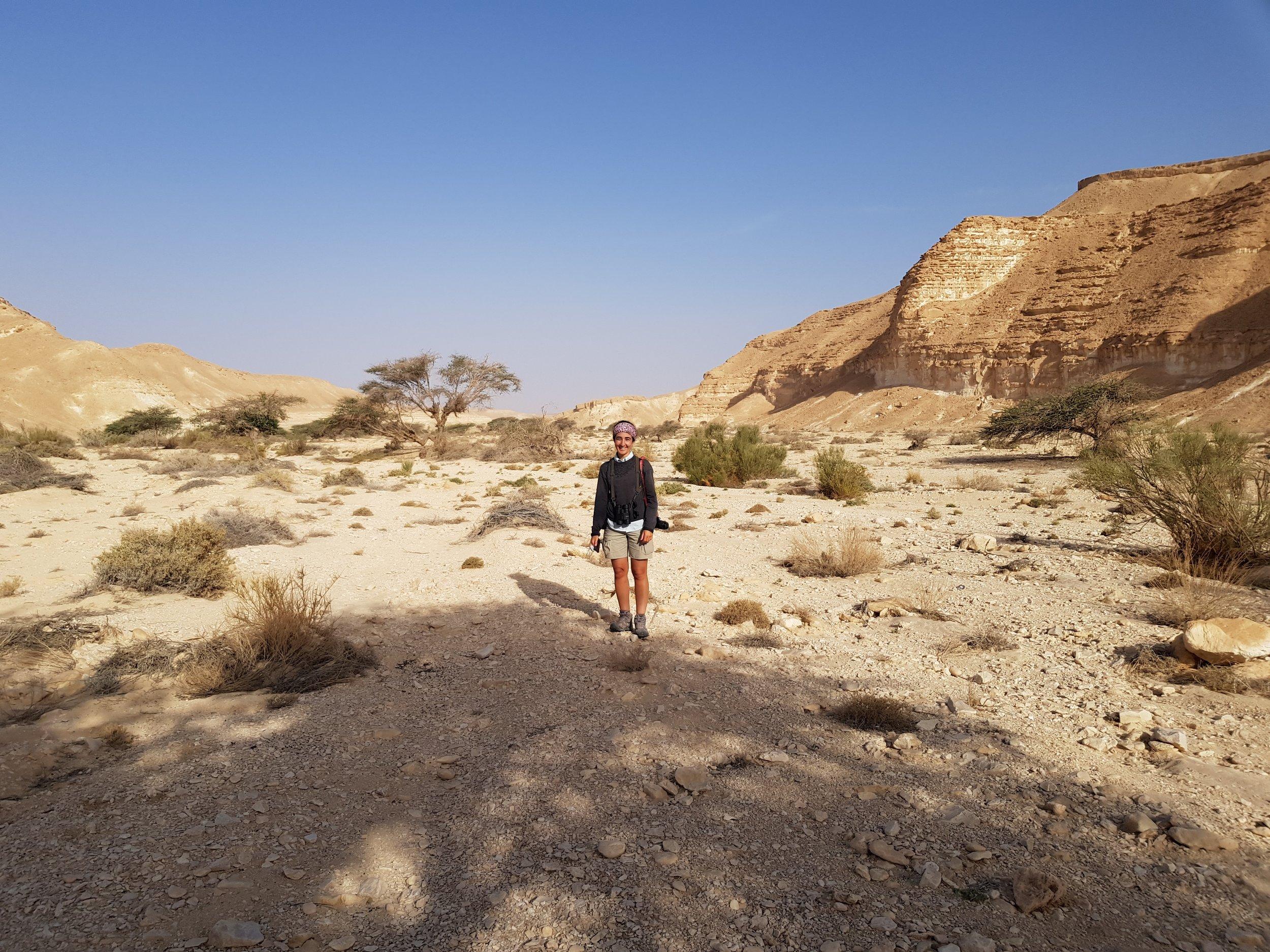 Ana in the Arava Valley near Hatzeva during the Arabian warbler survey.