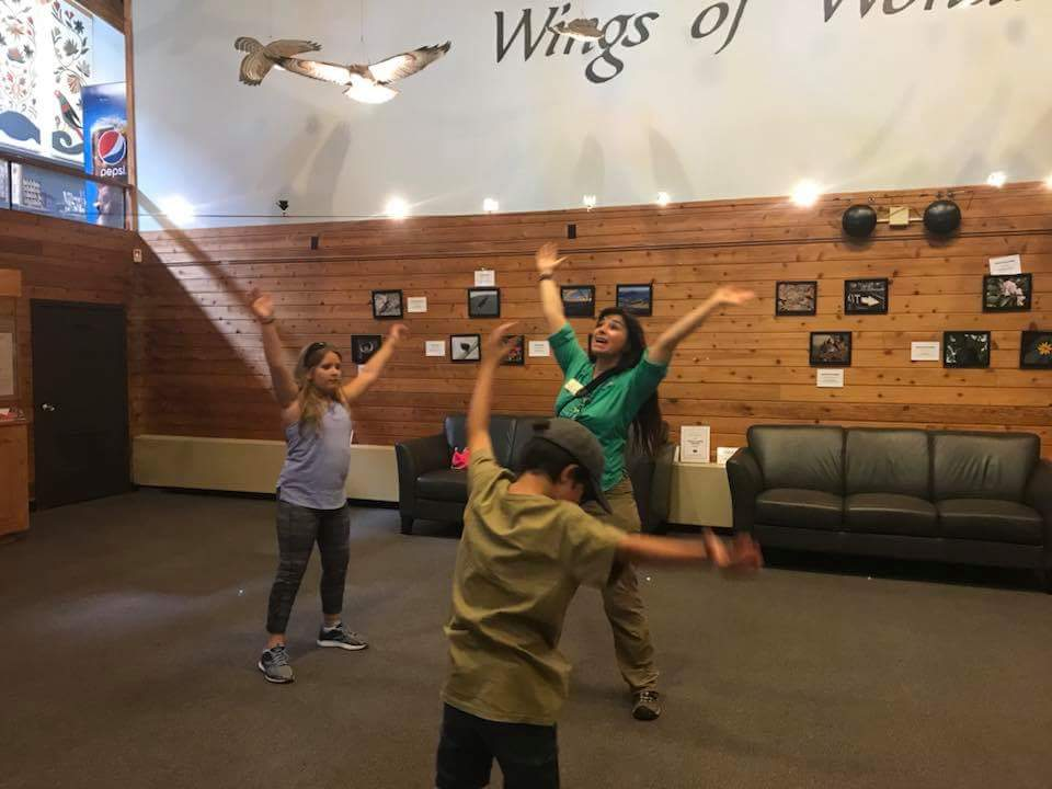 The Wings of Wonder downstairs gallery provided space to spread our own wings and flap like a falcon, soar like a buteo, and glide effortlessly like a turkey vulture A.K.A Bloodhound of the Sky.