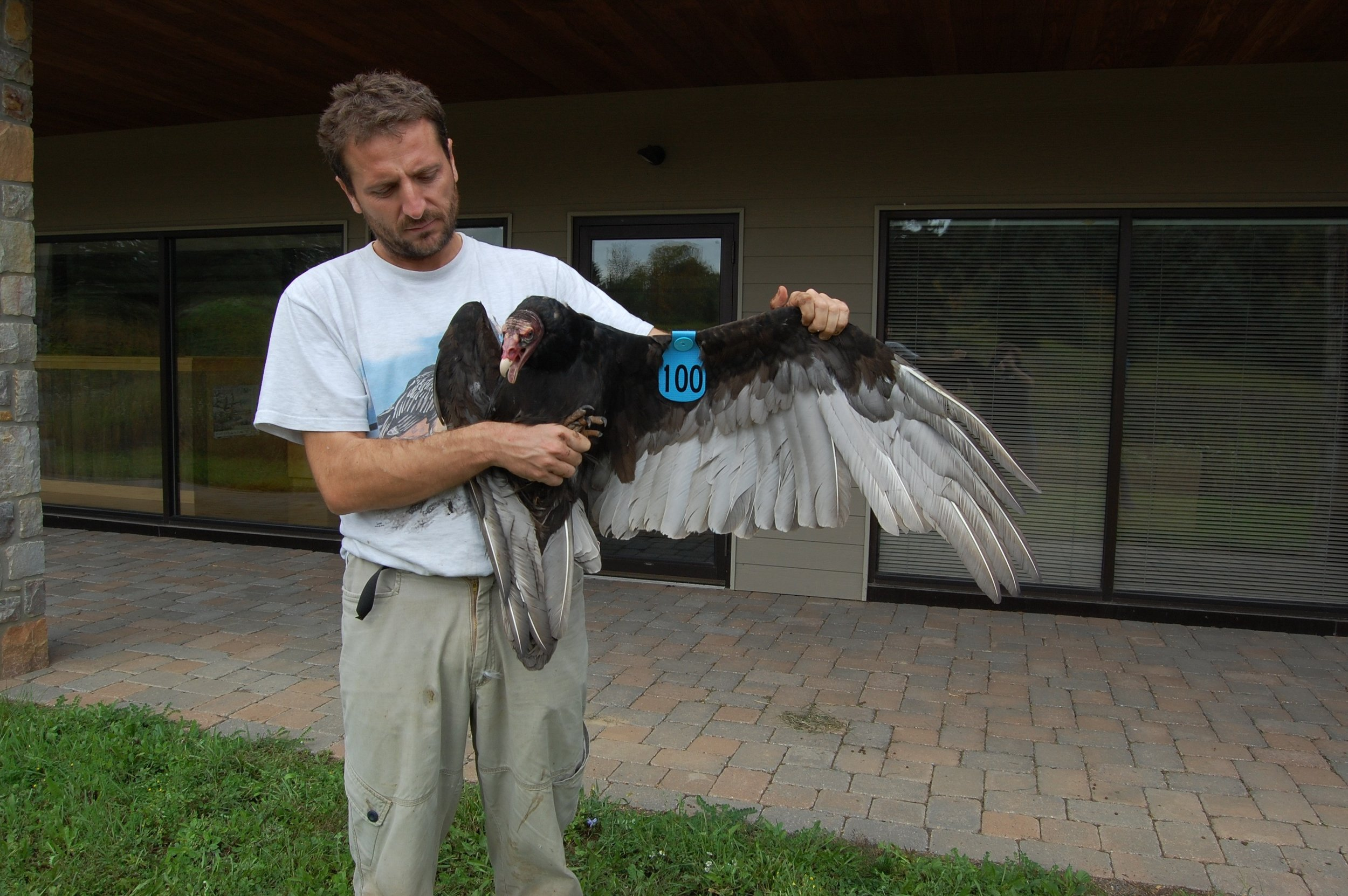 Alfonso with a tagged vulture outside of the HMS Acopian Center for Conservation Learning
