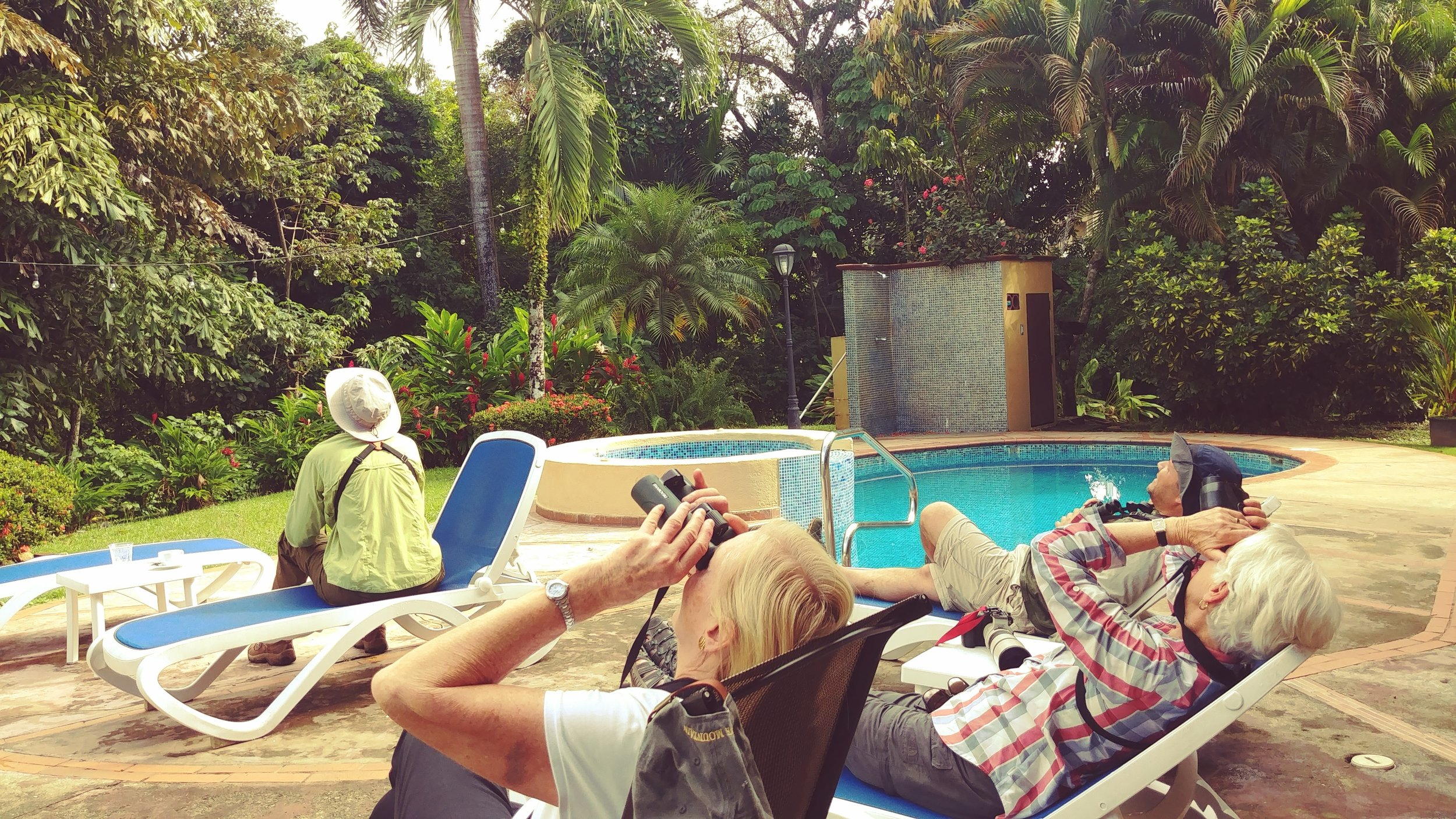 Bird-watching by the pool, photo by Laurie Goodrich.