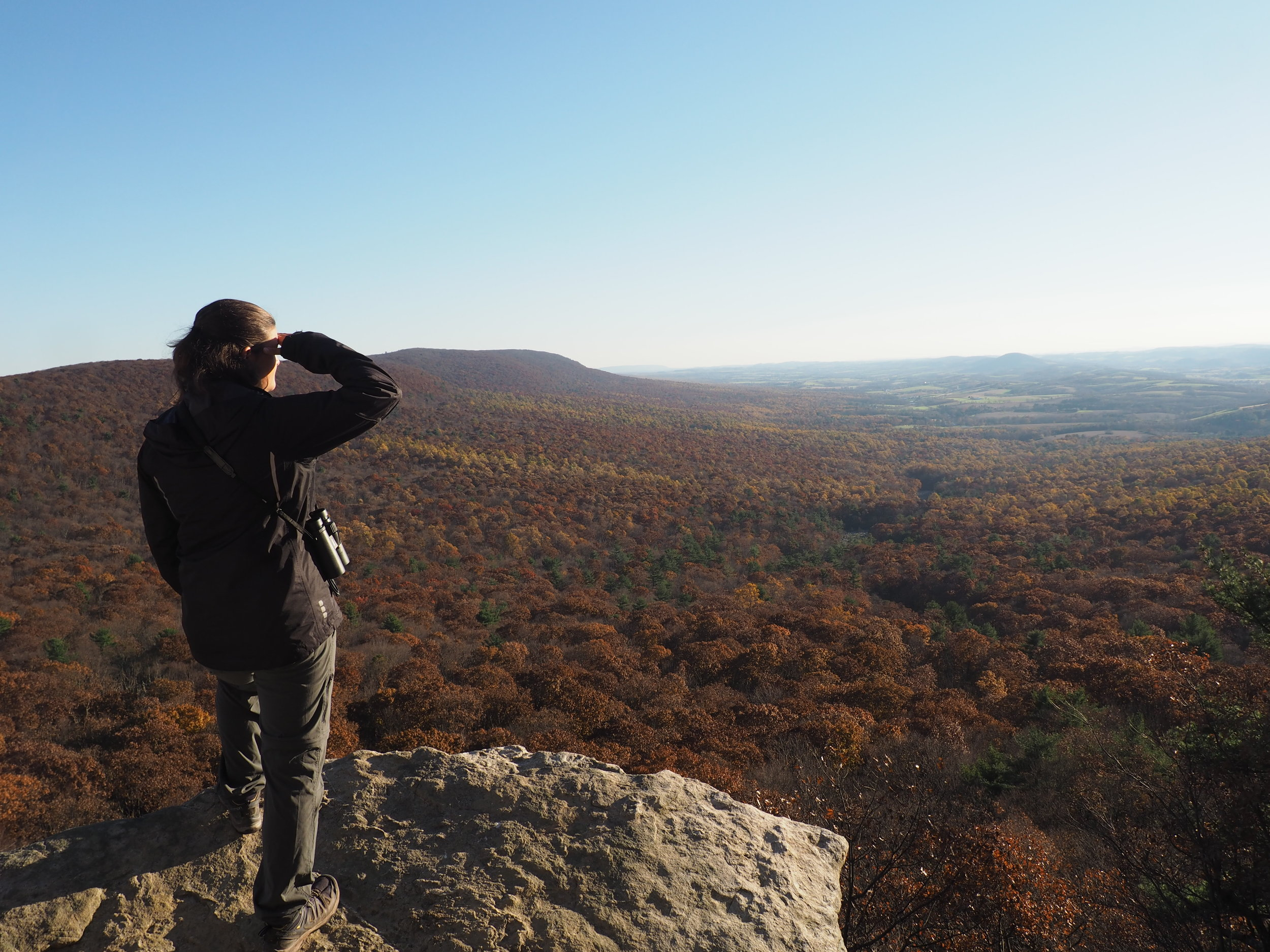 Adehl looks out at the valley from South Lookout.