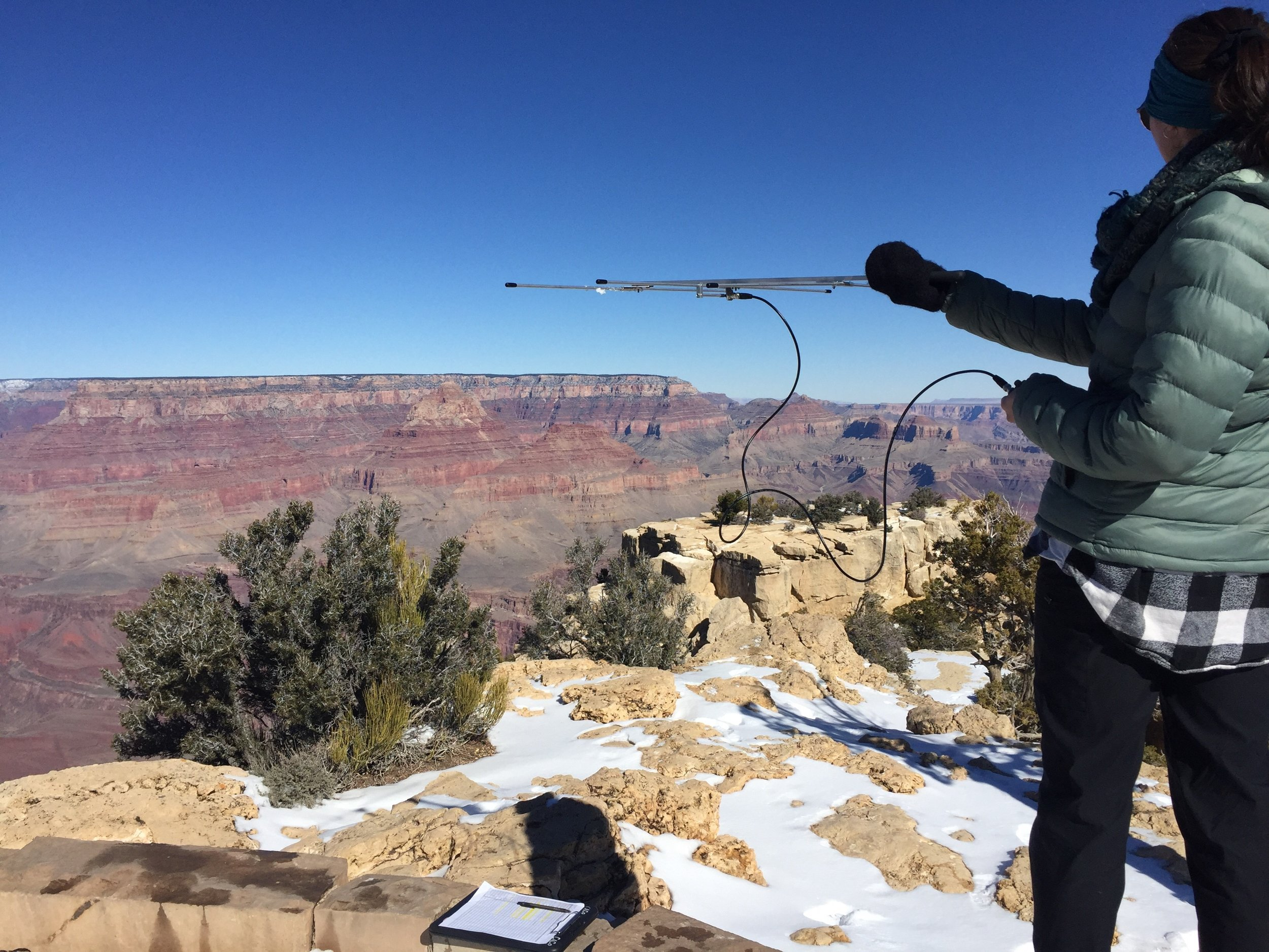 Kirsten using the radio telemetry unit to track California condors passing the canyon.