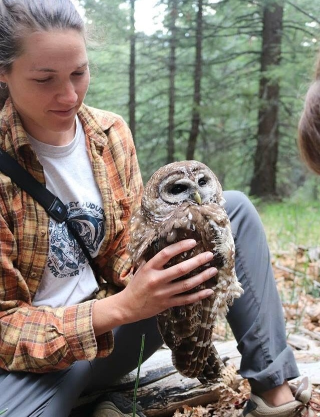 Kirsten holding a California spotted owl.