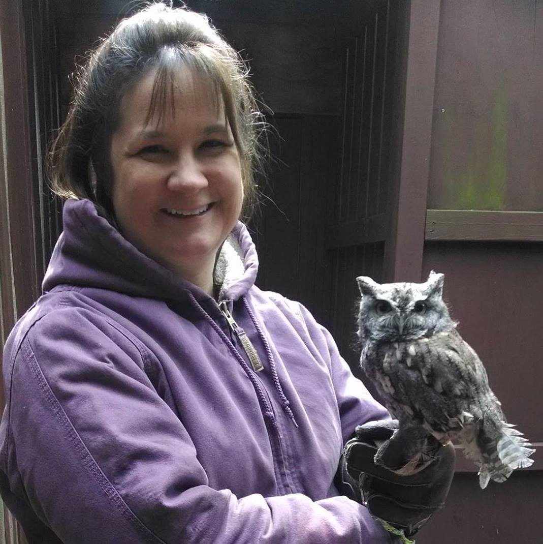 September 2014. The first time Cheryl retrieved the gray eastern screech owl.