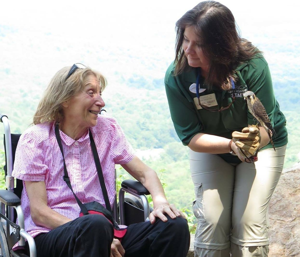 Cheryl showing the female American kestrel to a visitor at the Silhouette Trail grand opening in 2015.