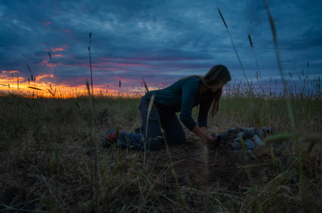 Zoey releasing an owl into a burrow at sunset.