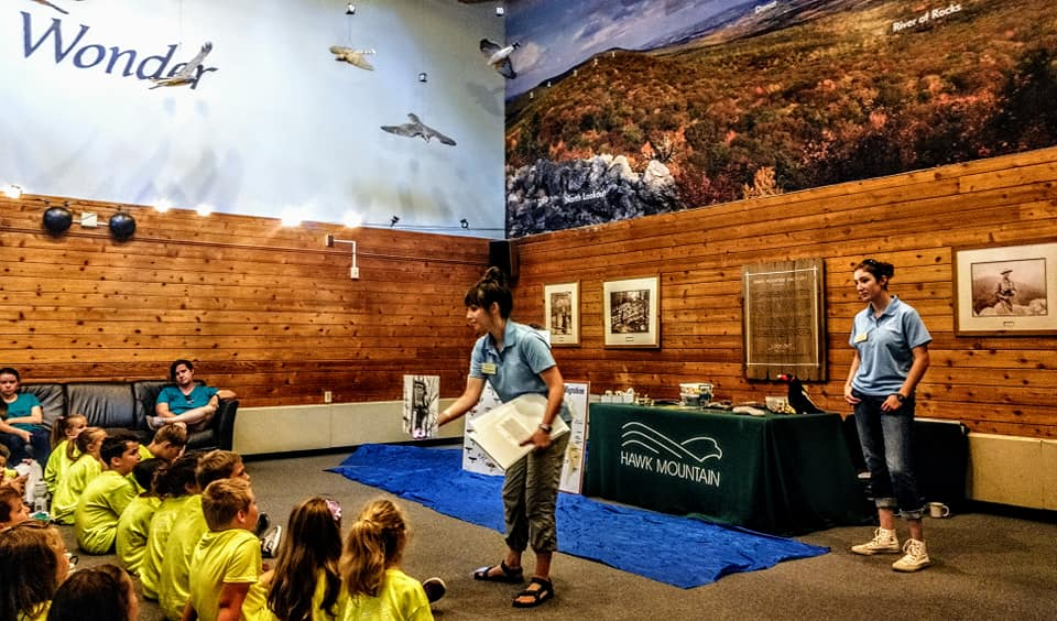 Alyssa and fellow trainee Diana host an elementary school field trip with the Raptors Over the Ridge introduction program.