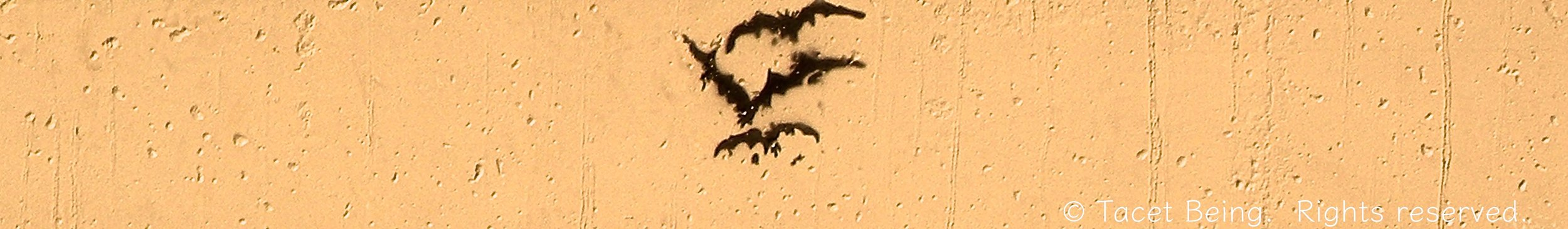 photo and editing by Tacet Being.  Stencil Artist Unknown.   Waugh Bridge Bat Colony