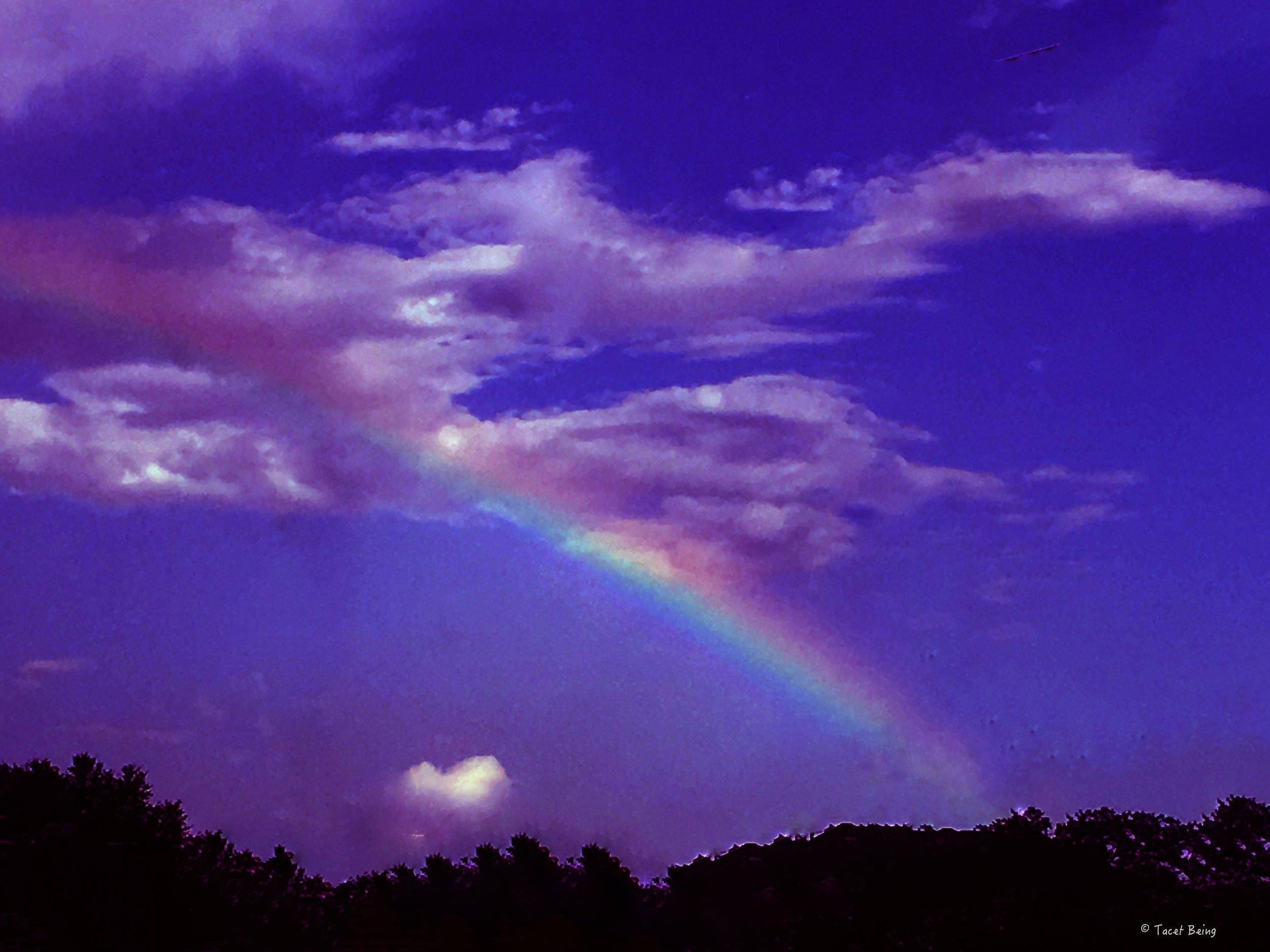 rainbow traffic stop_tb.jpg