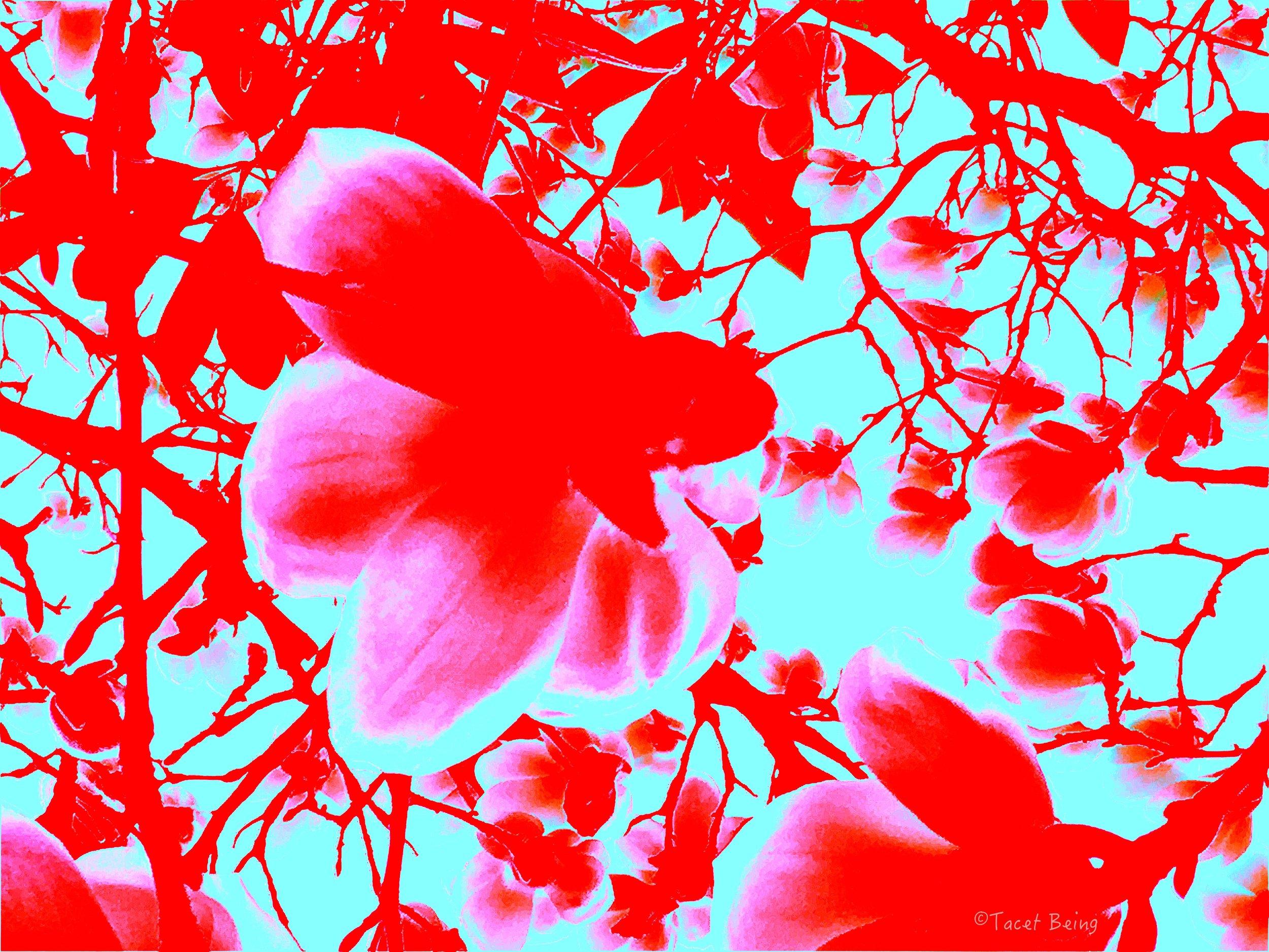 up a flower tree_tb.jpg