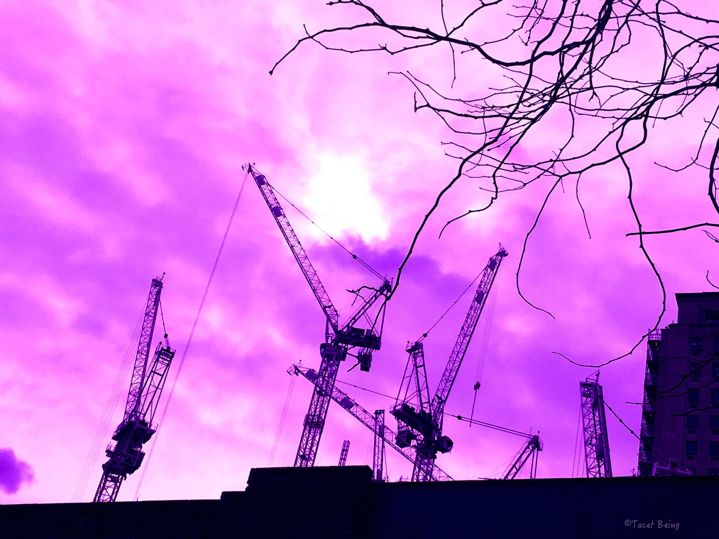 cranes_tb.jpg
