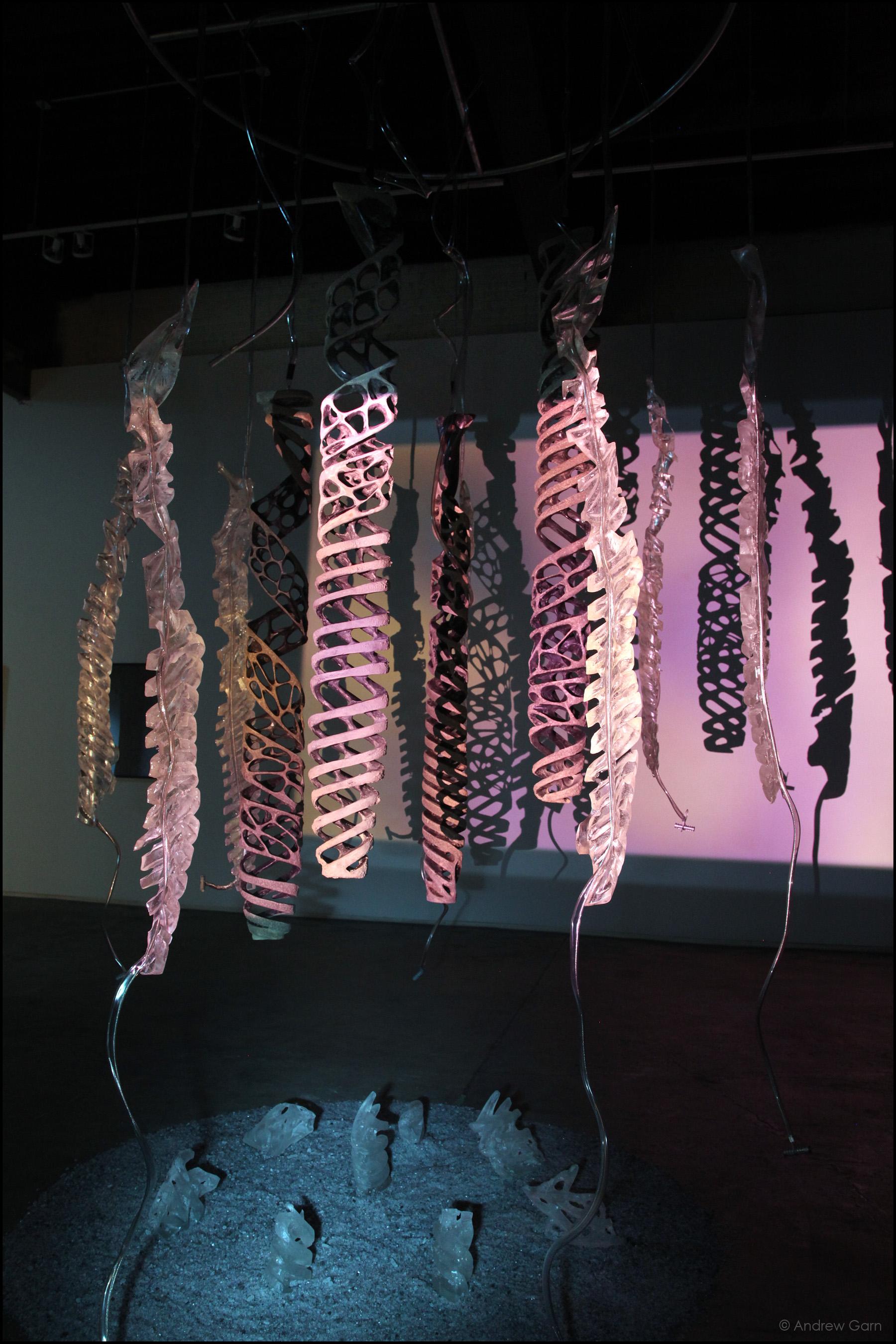 Ghost Moth, Causey Contemporary Fine Art (2011-12)
