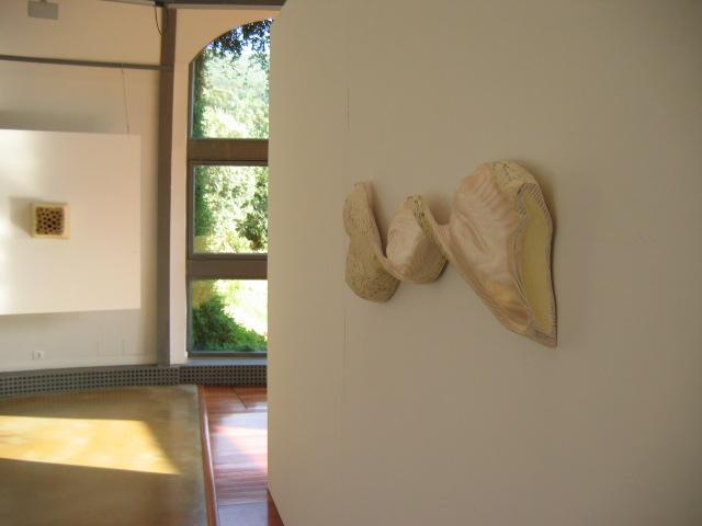 Foreign Body, Espacio Moran de Art Contemporaneo  (2005)