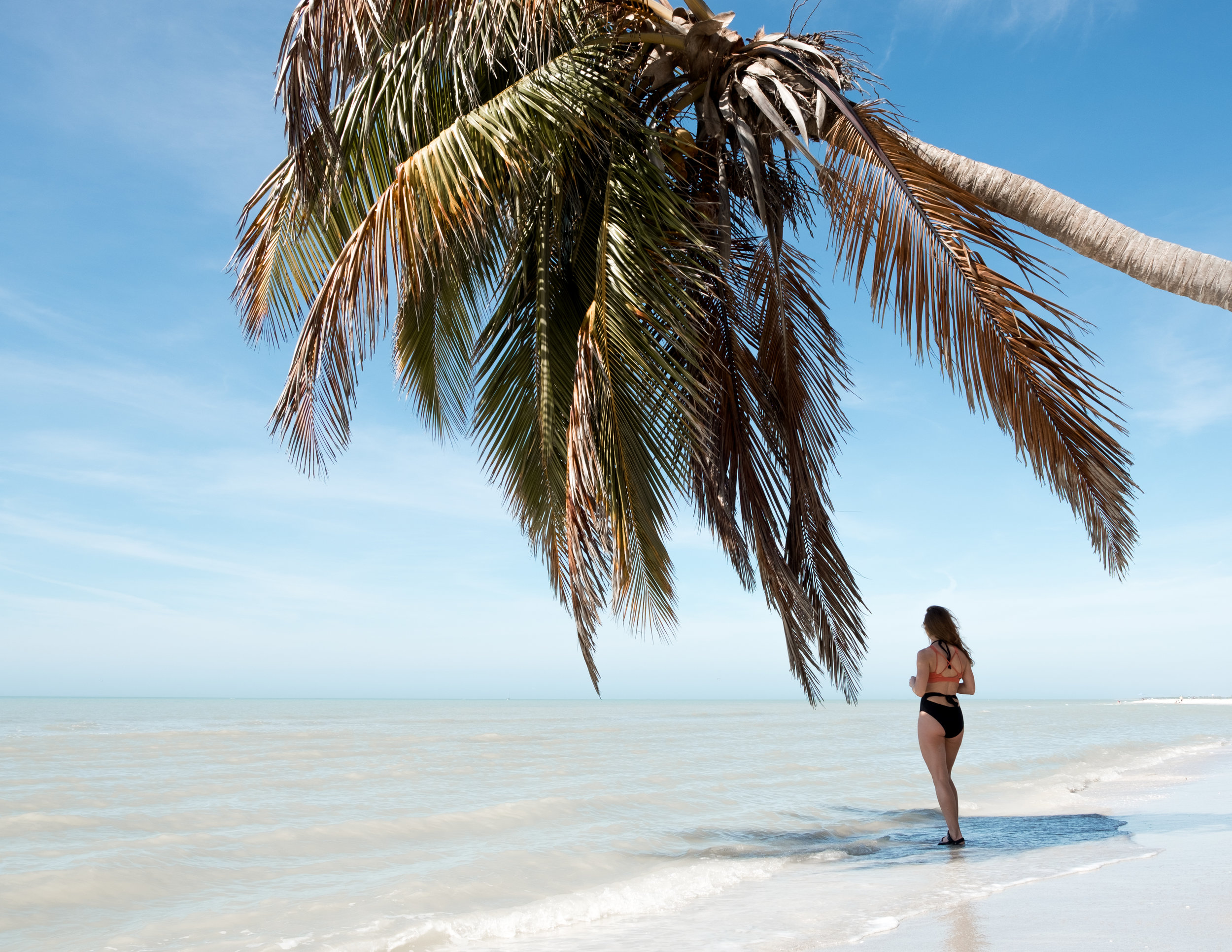 Sanibel Island beach walks