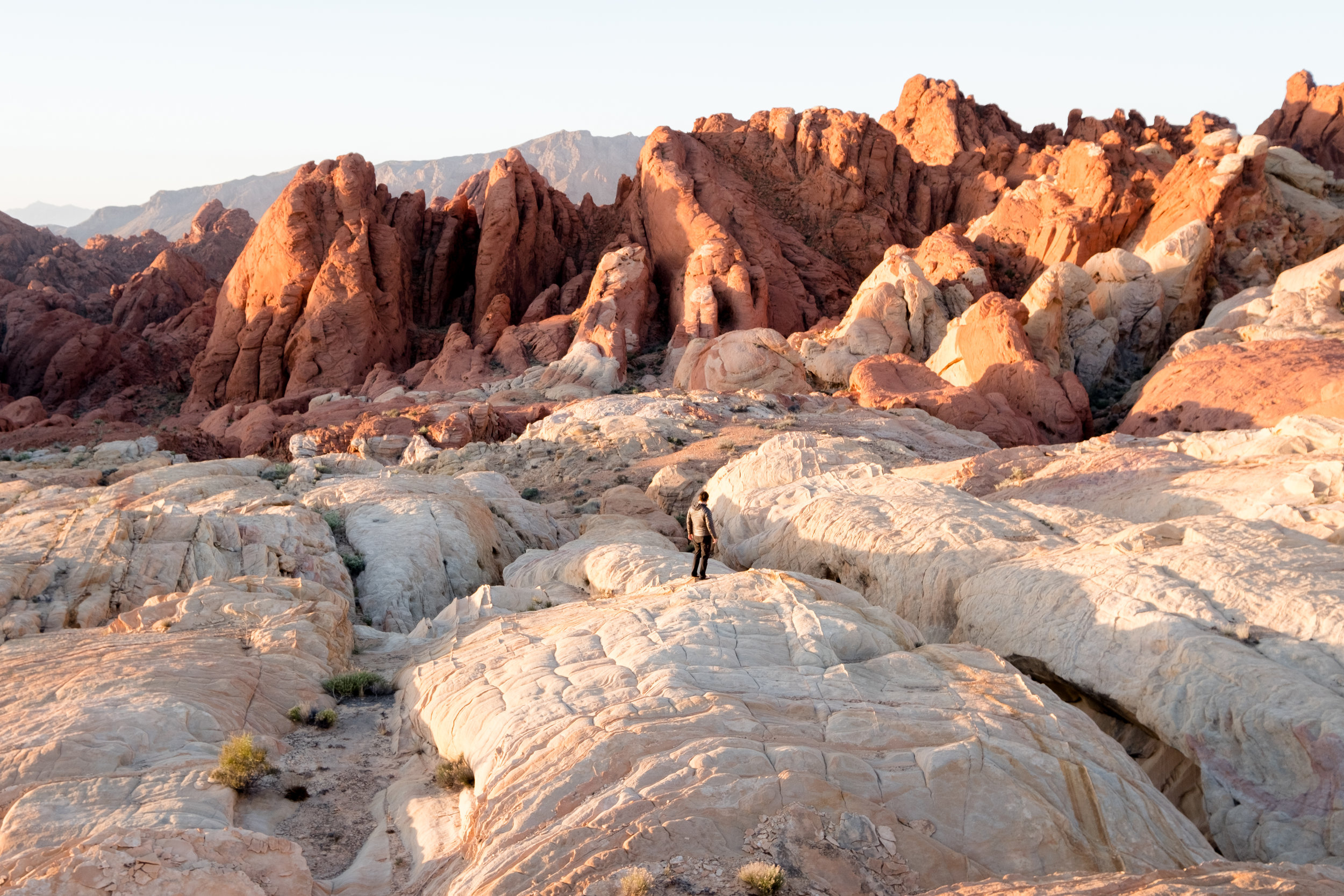 Sunrise casting an orange glow on these unique formations in the Valley of Fire.