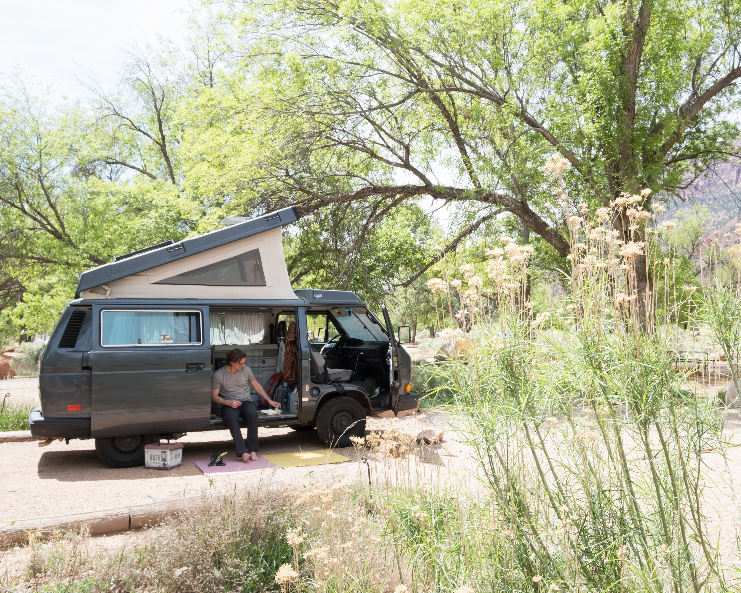 The Watchman Campground at Zion National Park.
