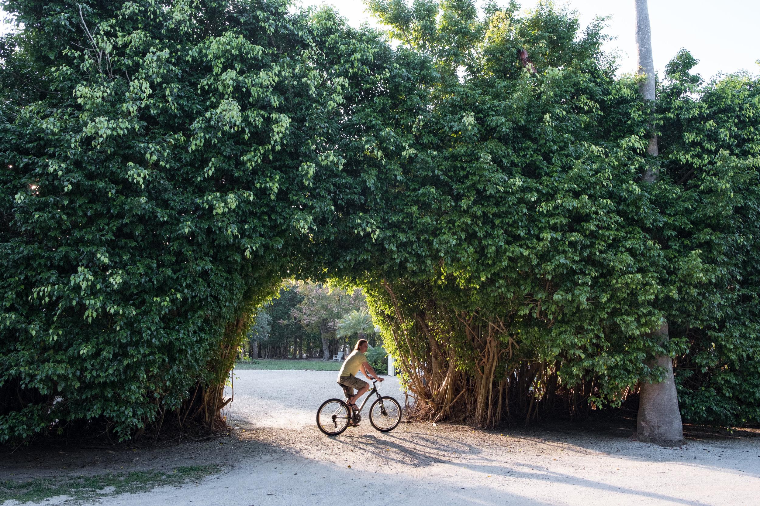 Biking around Sanibel Island