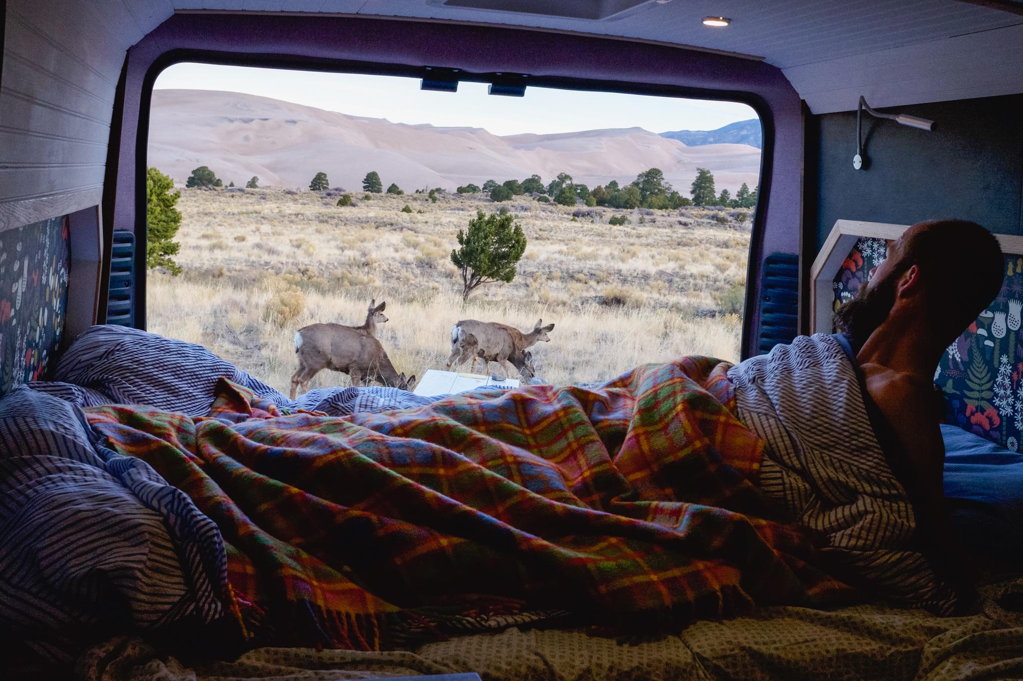 "2015 Dodge Ram Promaster 159"" Conversion For Sale"