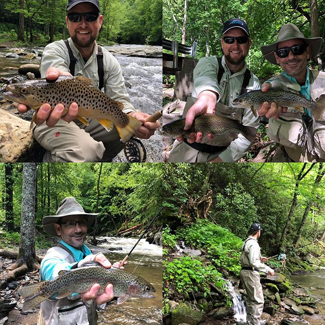 When you catch 25 fish your first day fly fishing! #flyfishing #trout #828isgreat #browntrout #rainbowtrout #catchandrelease #nantahalanationalforest