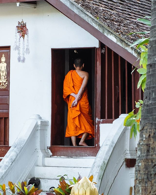 It's impossible not to spot all the saffron robed monks in Luang Prabang. We kept our distance as far too many are thronged daily by tourists with their flash in their faces. 🤦