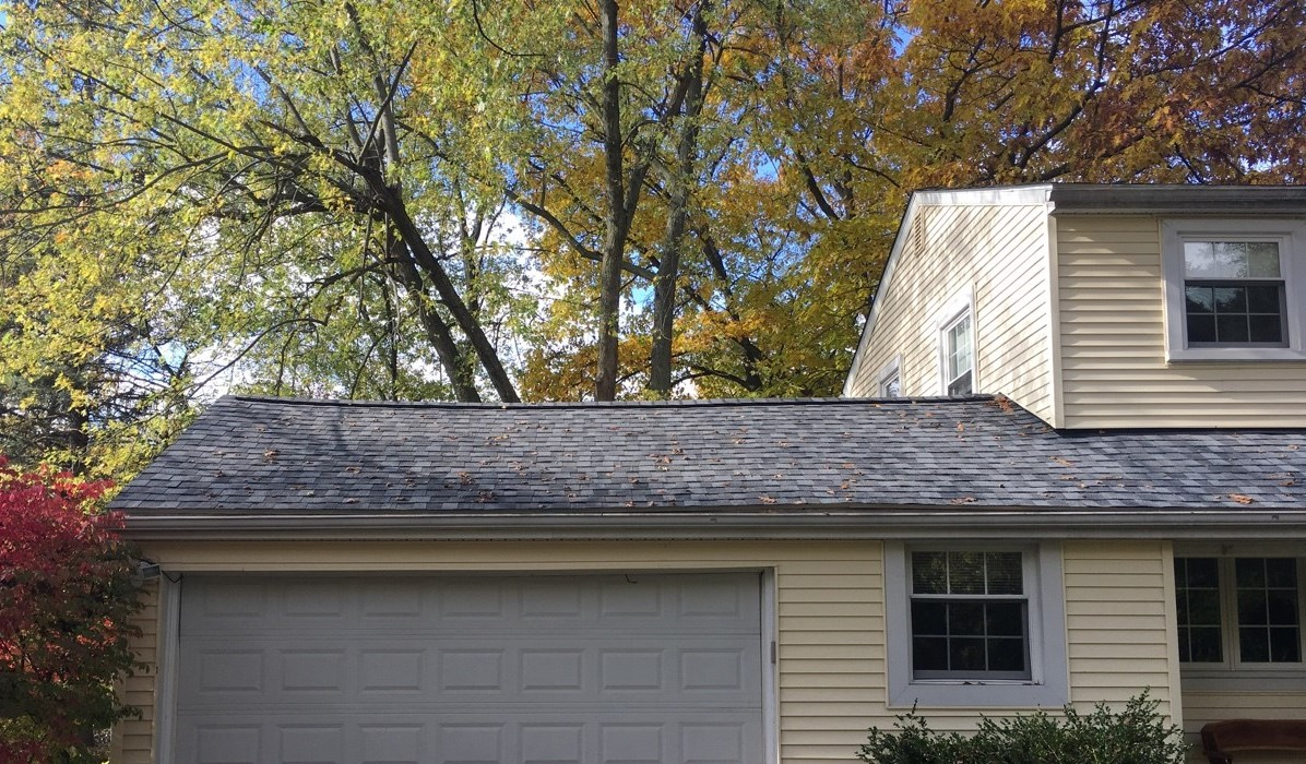 Ann Arbor Roof