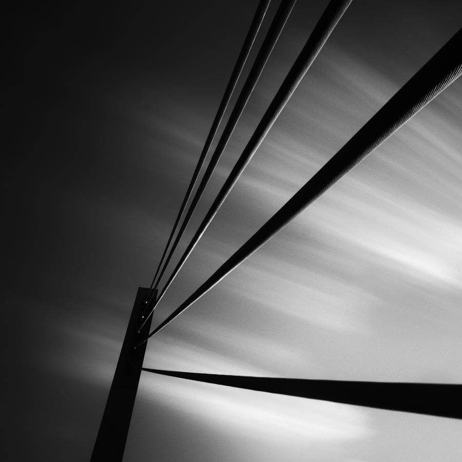 Strings, 2011