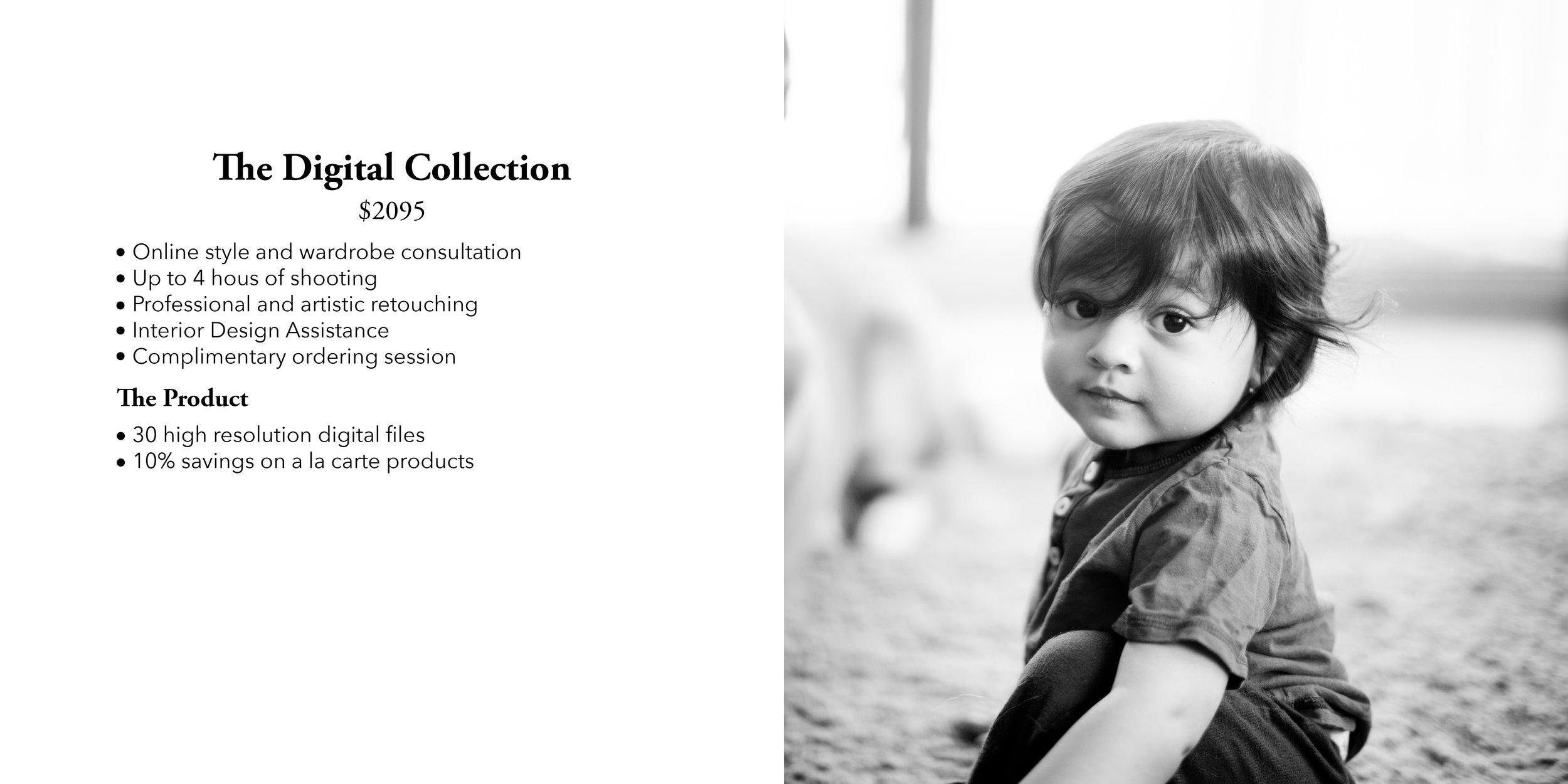 Danielle Sasson Photography 12.jpg