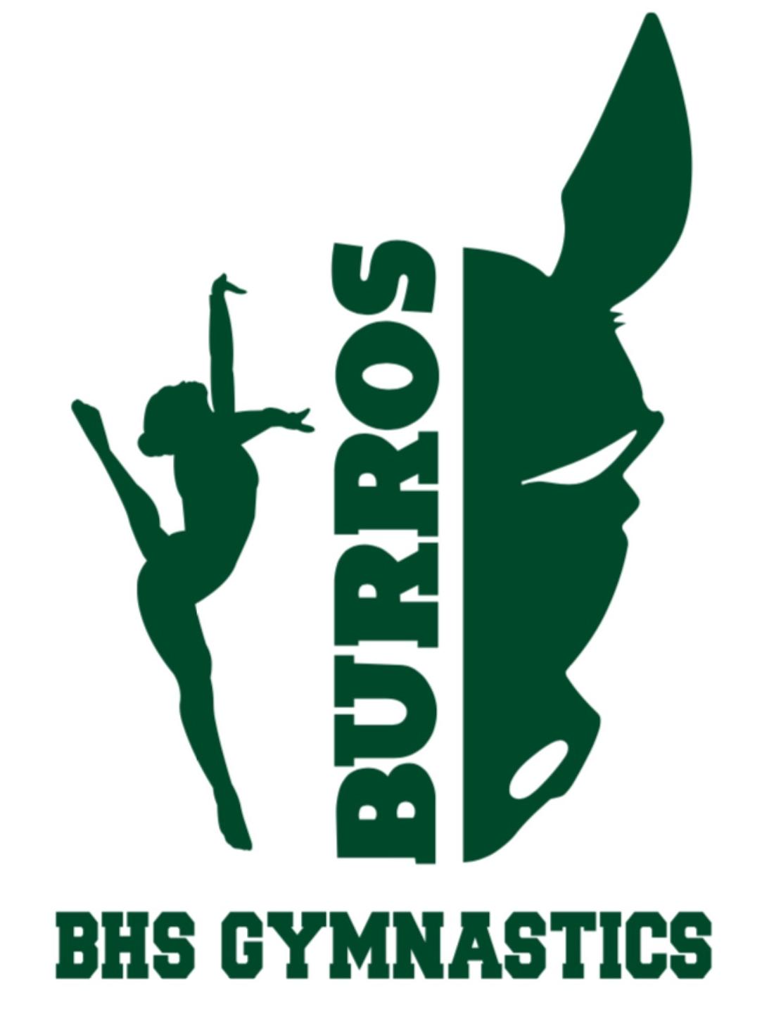 Burroughs High School Gymnastics Team